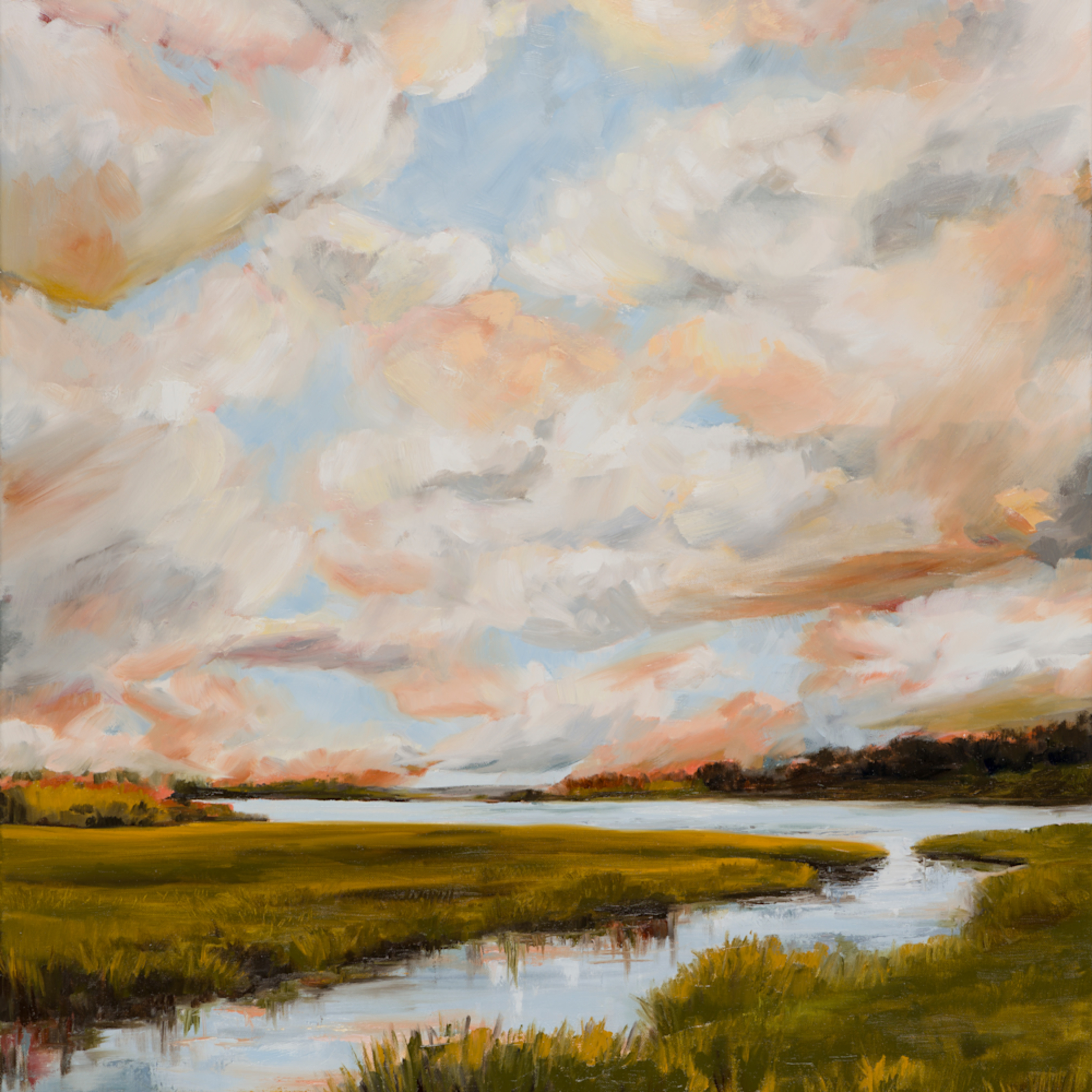 Large warm marsh cxge95