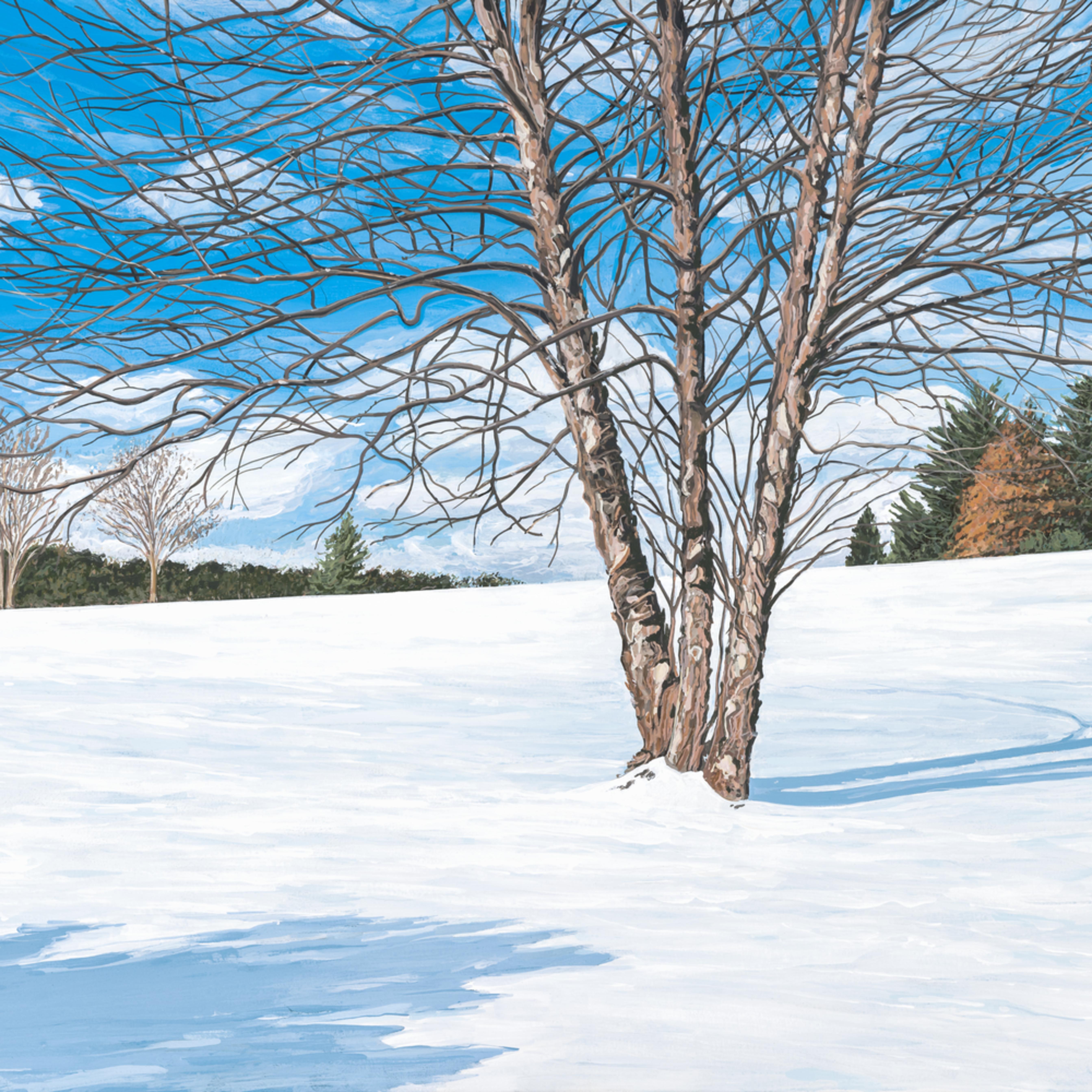 A winters day 24x18 pojfyv
