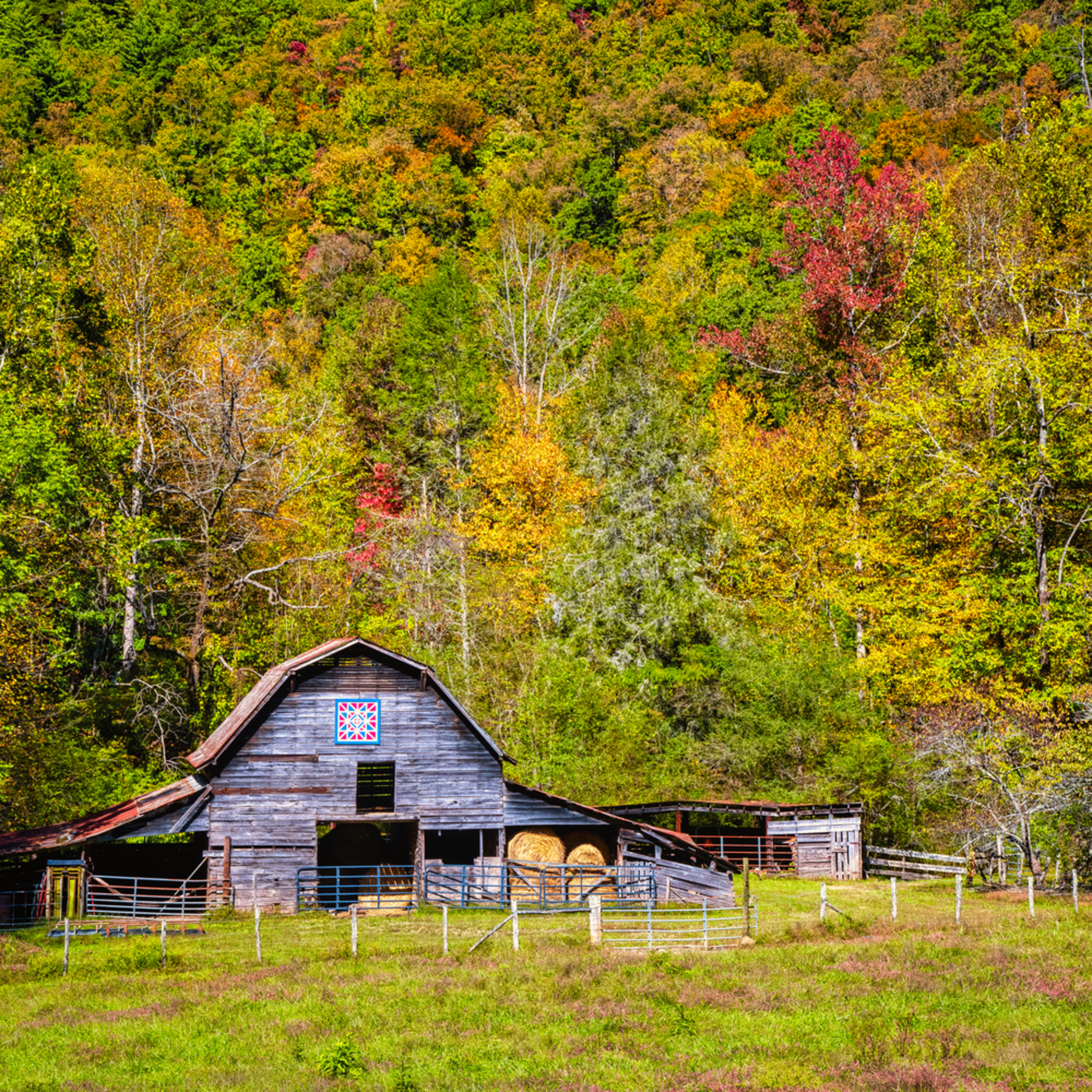 Andy crawford photography smoky mountains farm life j4ghzf