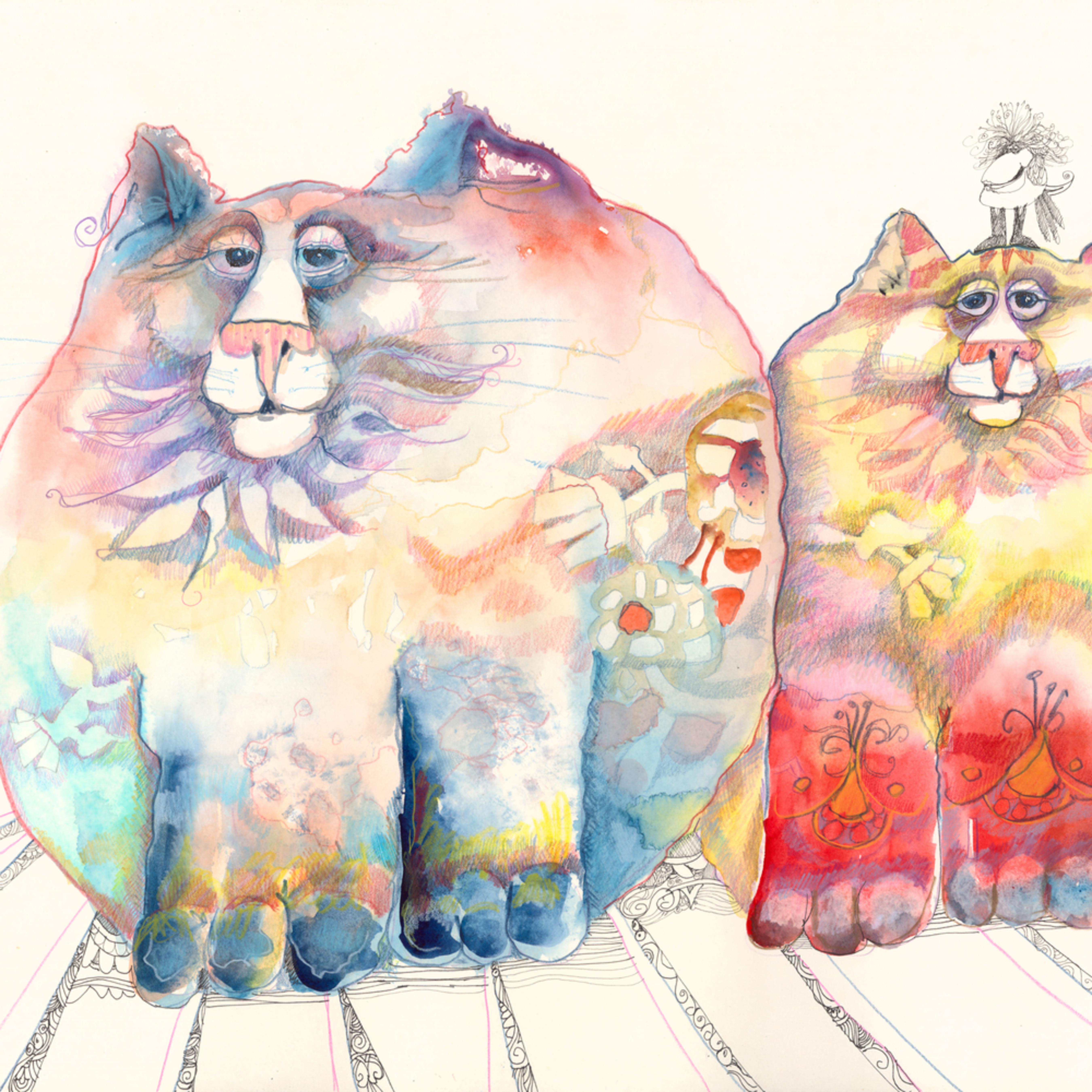 2 flat cats cbgb6s