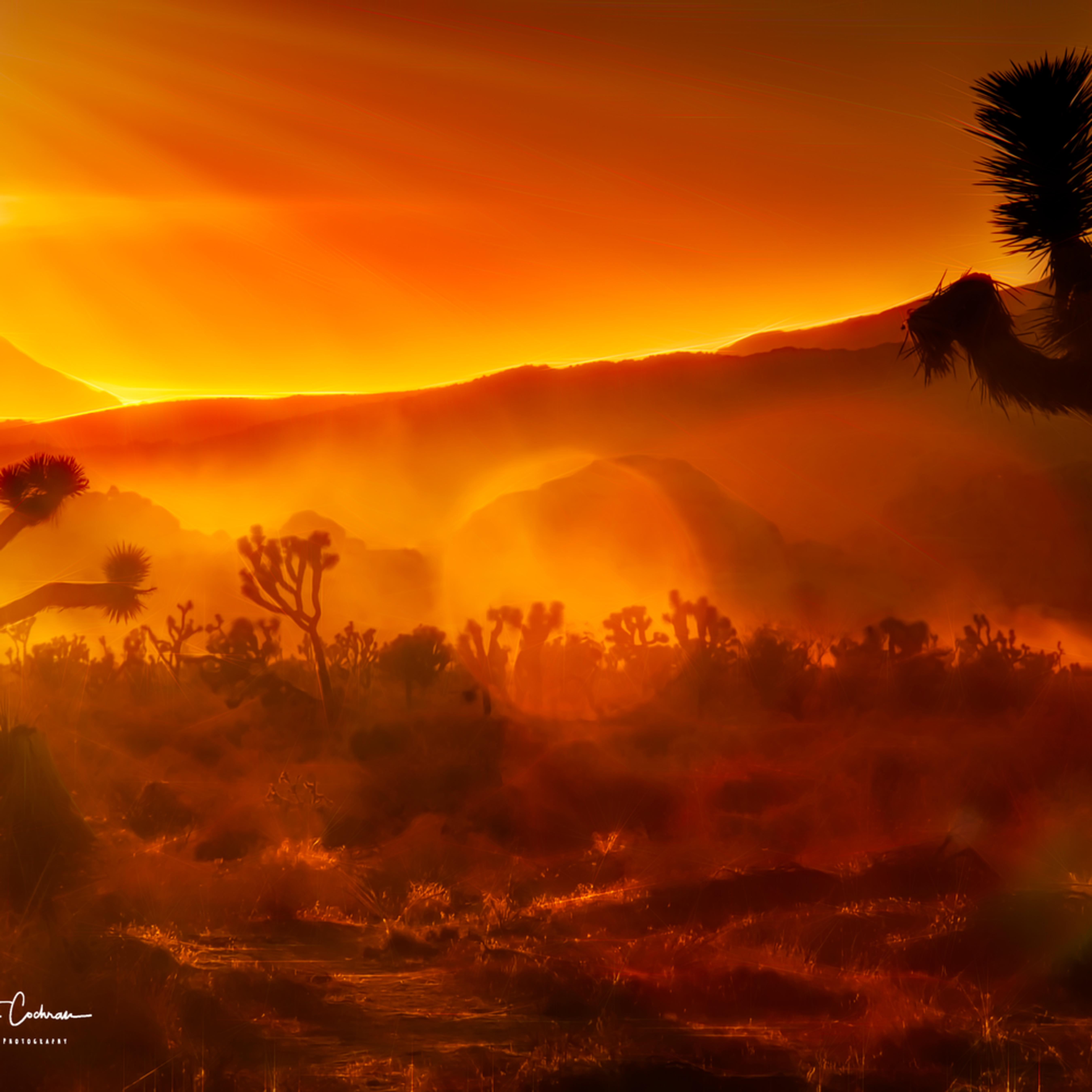 Mystical desert sunset sazutz