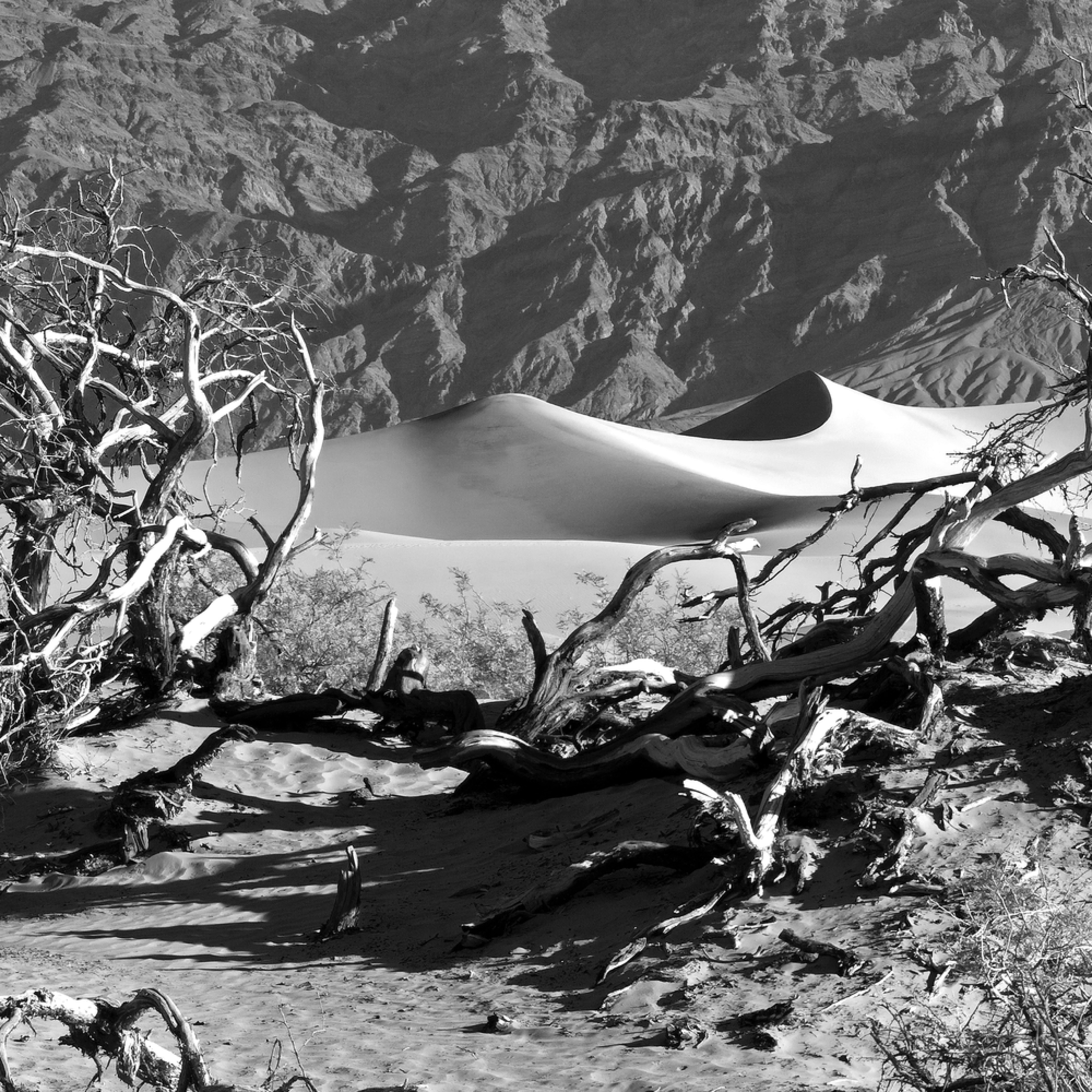 Death valley gqvl45