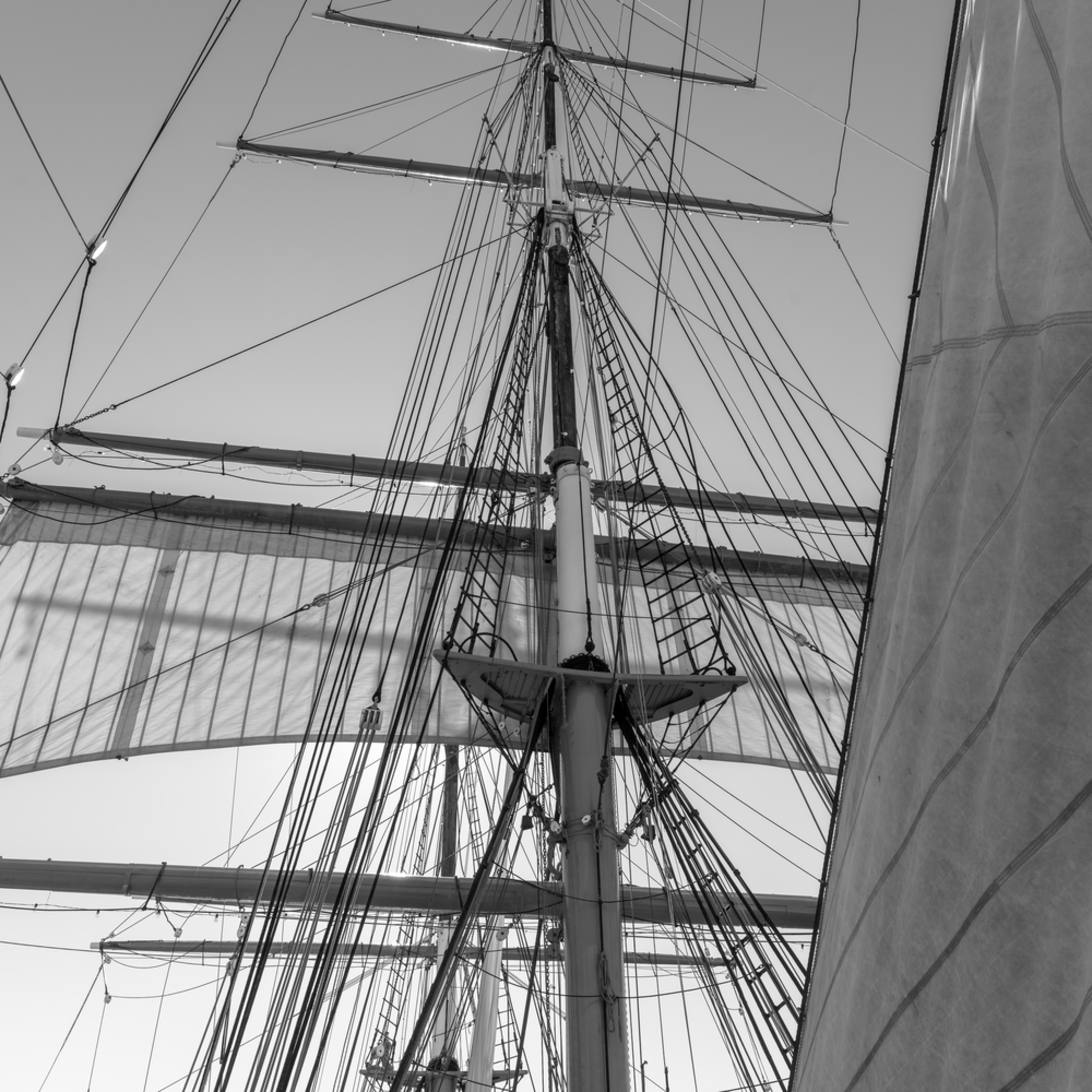 Main lower topsail and staysail   star of india  ey1nak