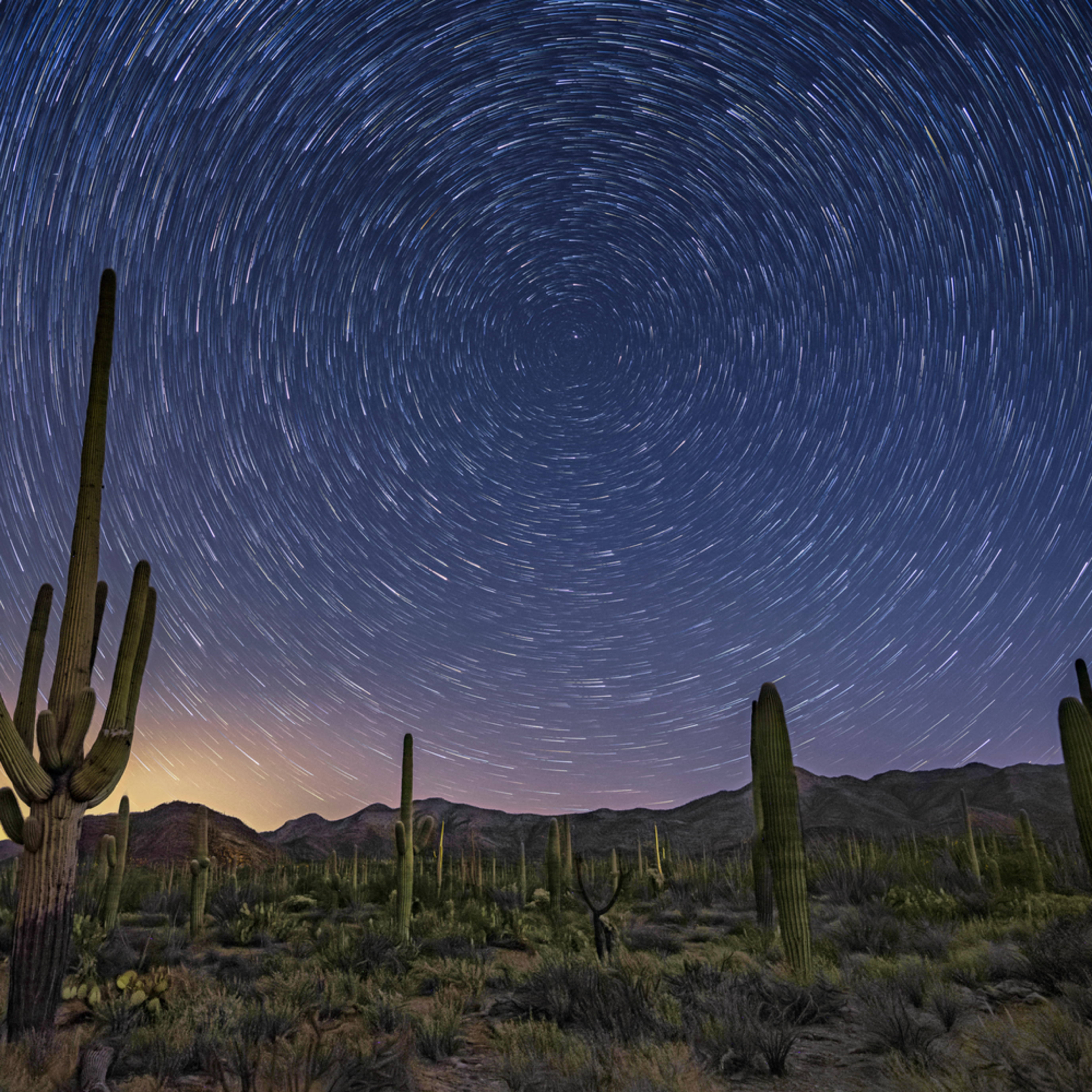 Star trails in the tucson mountain park zh3quz