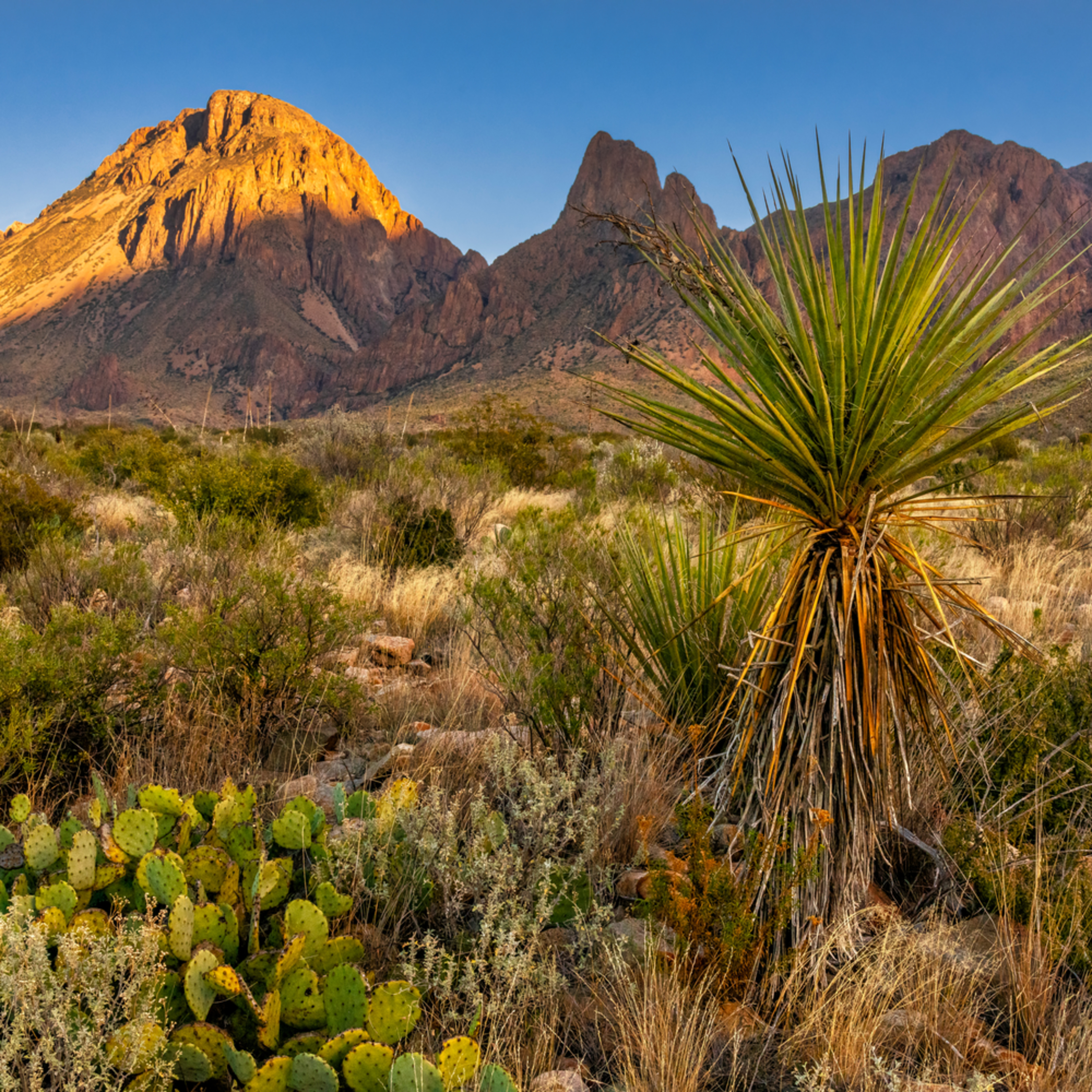 Andy crawford photography big bend national park chisos mountains 2 sjb6bg