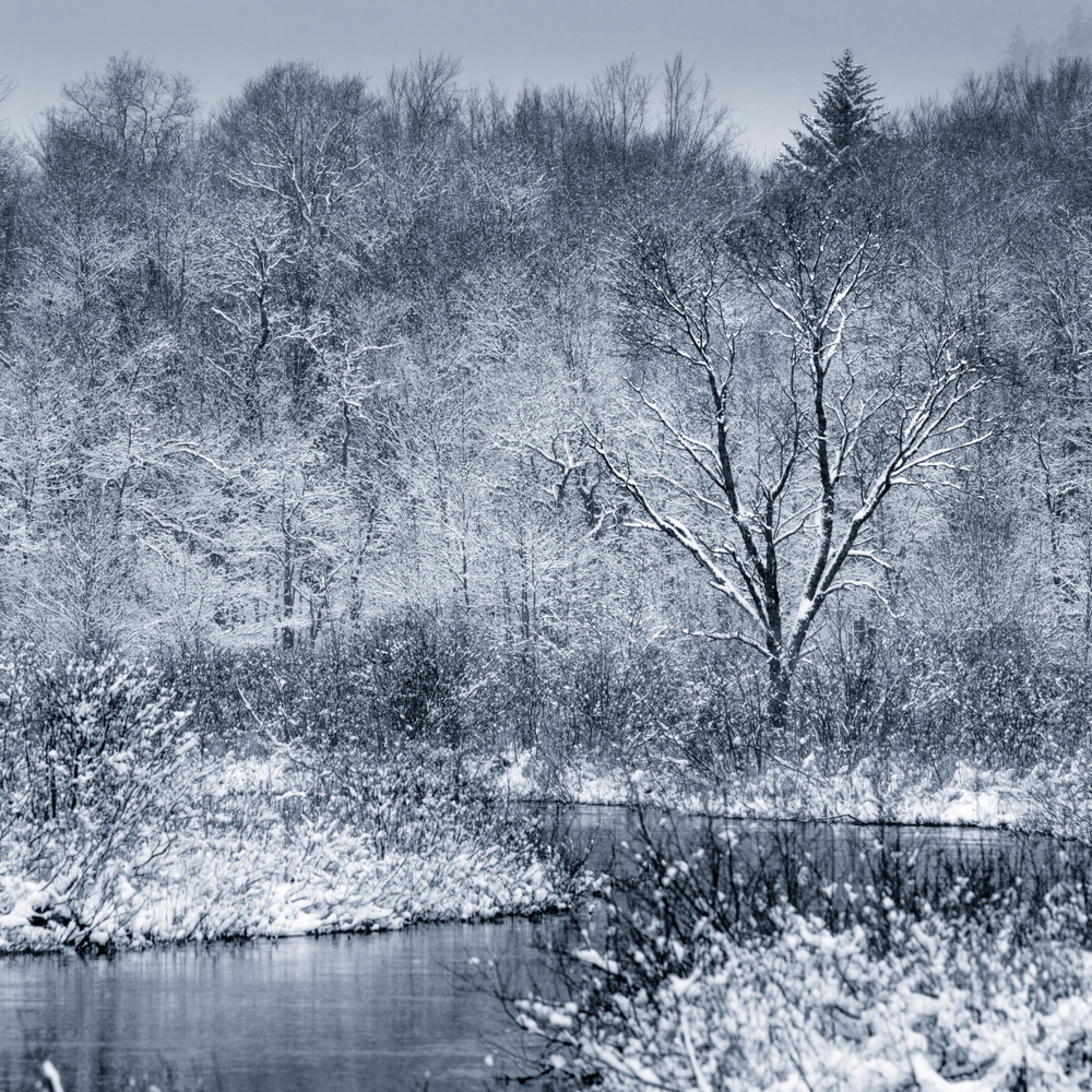Moose river winter 2020 v2 bdeuf9