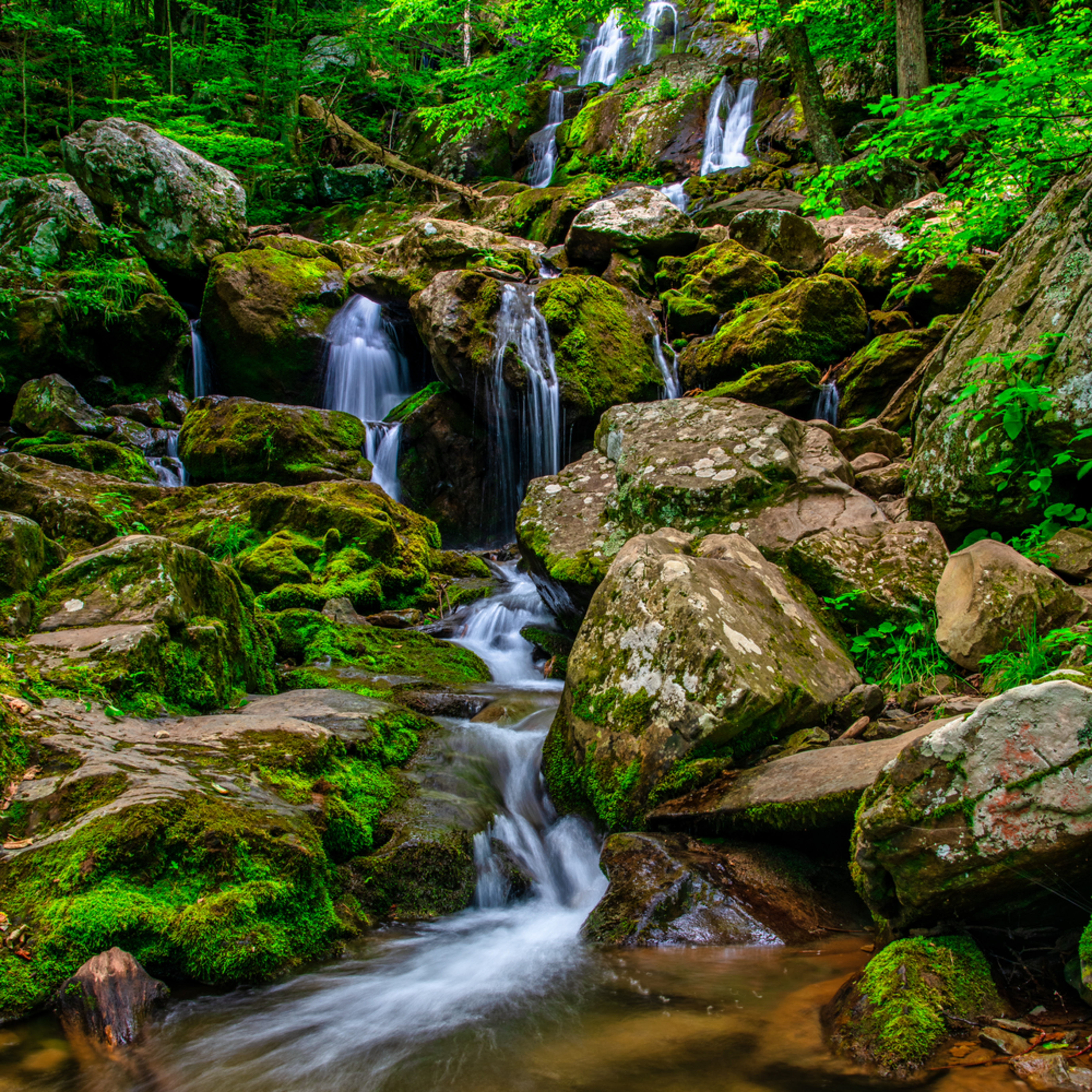 Andy crawford photography down dark hollow falls ktmm1p