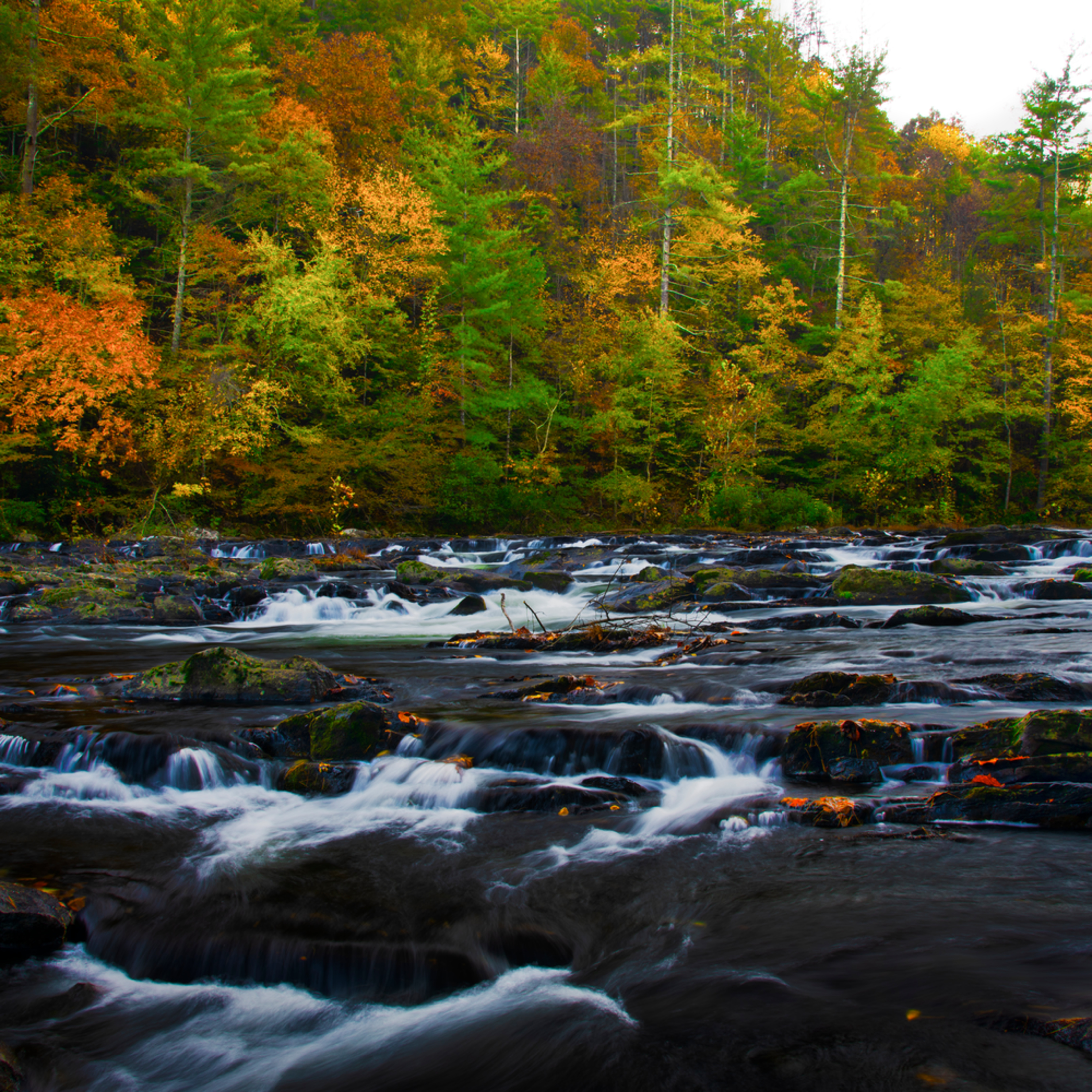 Andy crawford photography autumn on the tellico haityv
