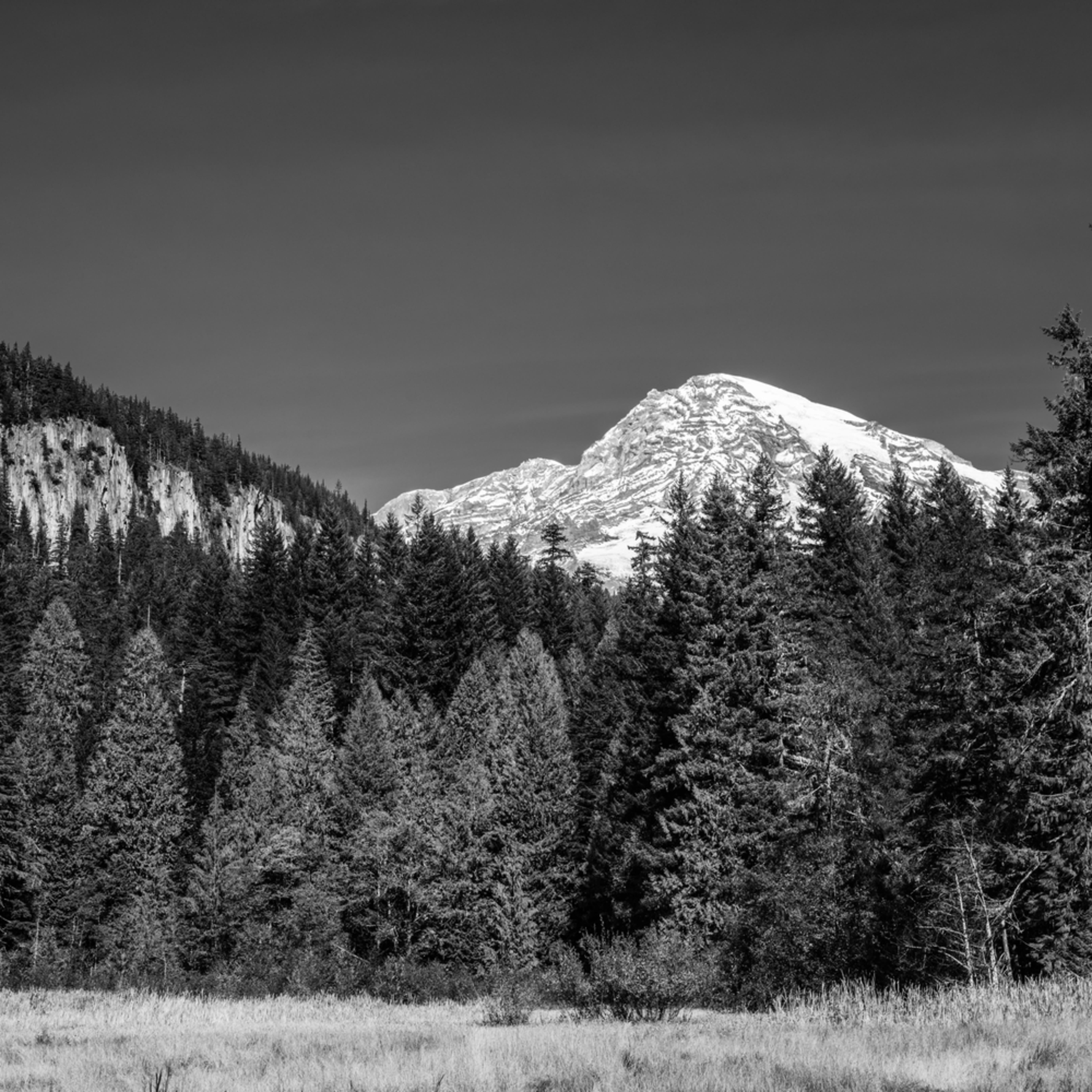 Mt rainier longmire meadows washington 2020 zp3xyf