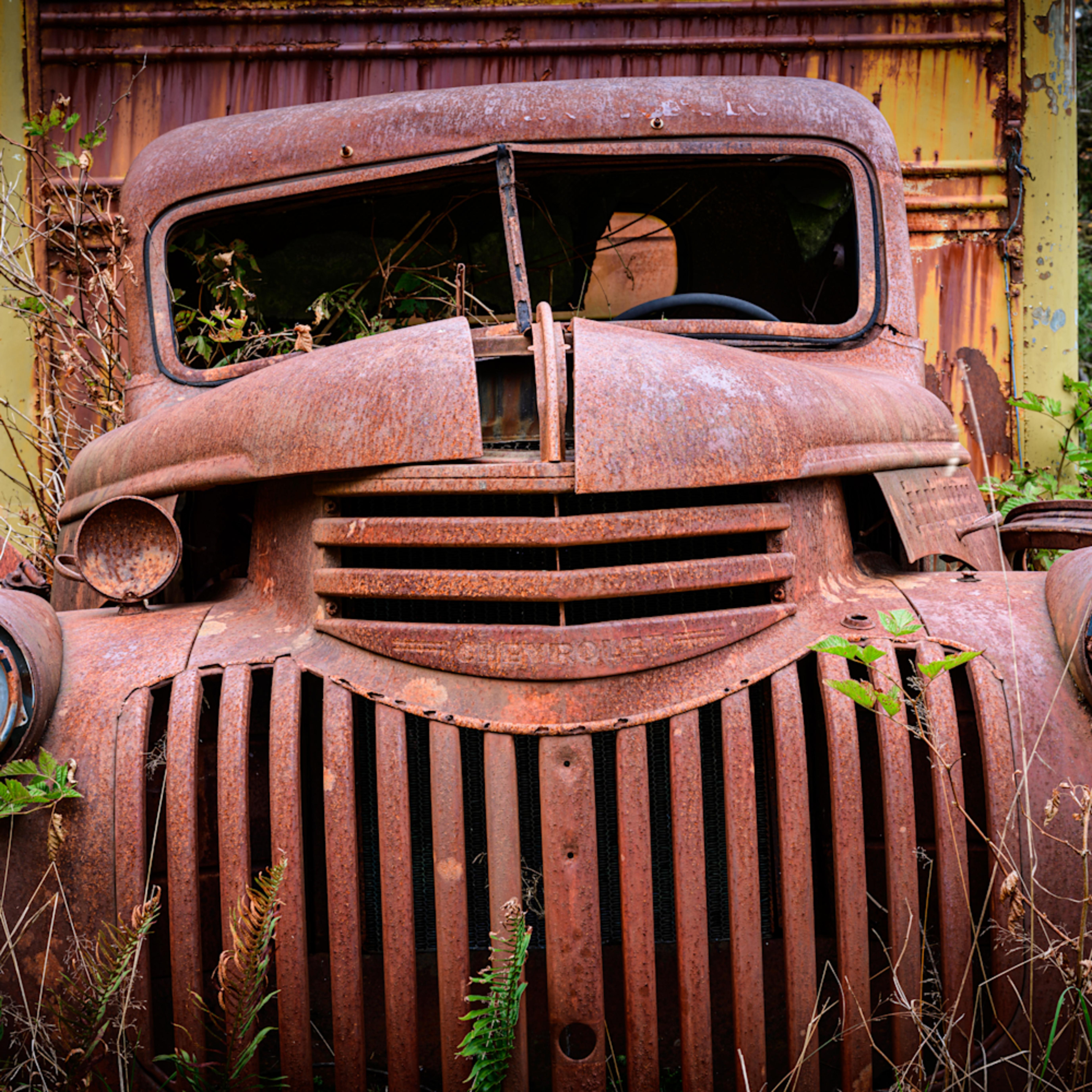 Rusty chevrolet truck olympic national park washington 2020 hcjlvh