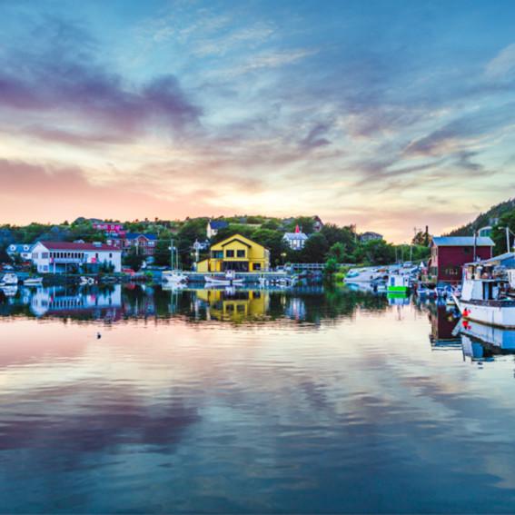 Quidi vidi tranquil harbour qzipvl