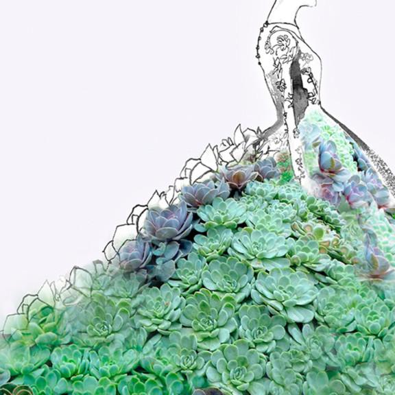 Succulent gown mniwdl