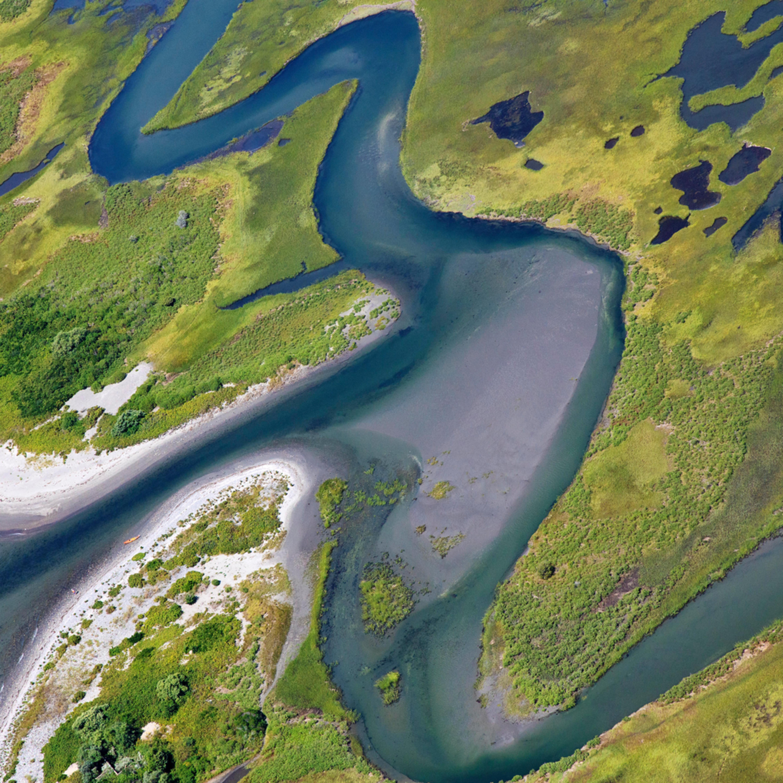 Fogland marsh print cqt96d