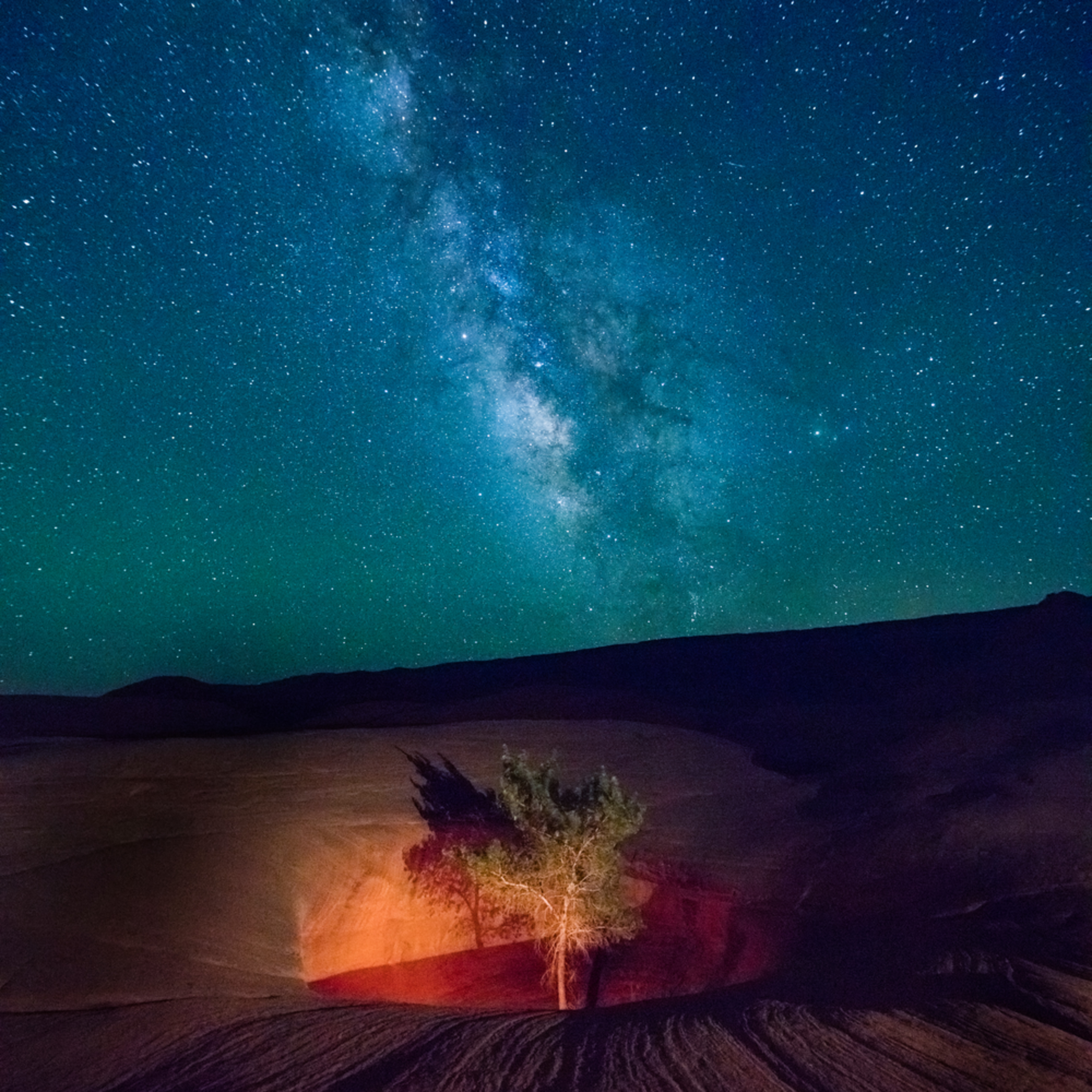 Lone tree with the milky way egrpm0