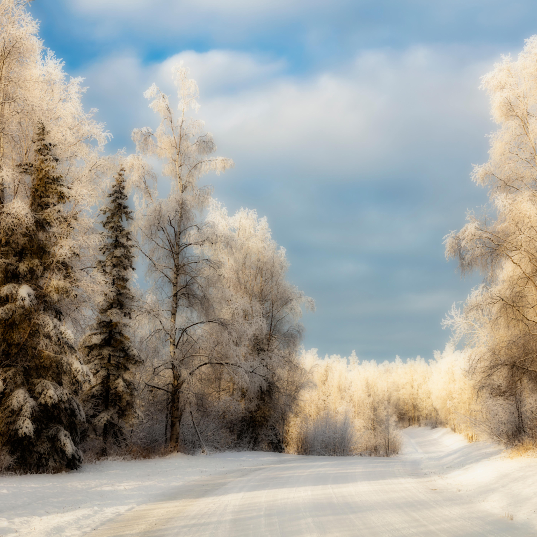 20201119 winter frost dsr2211 orton effect artstorefronts vse4of