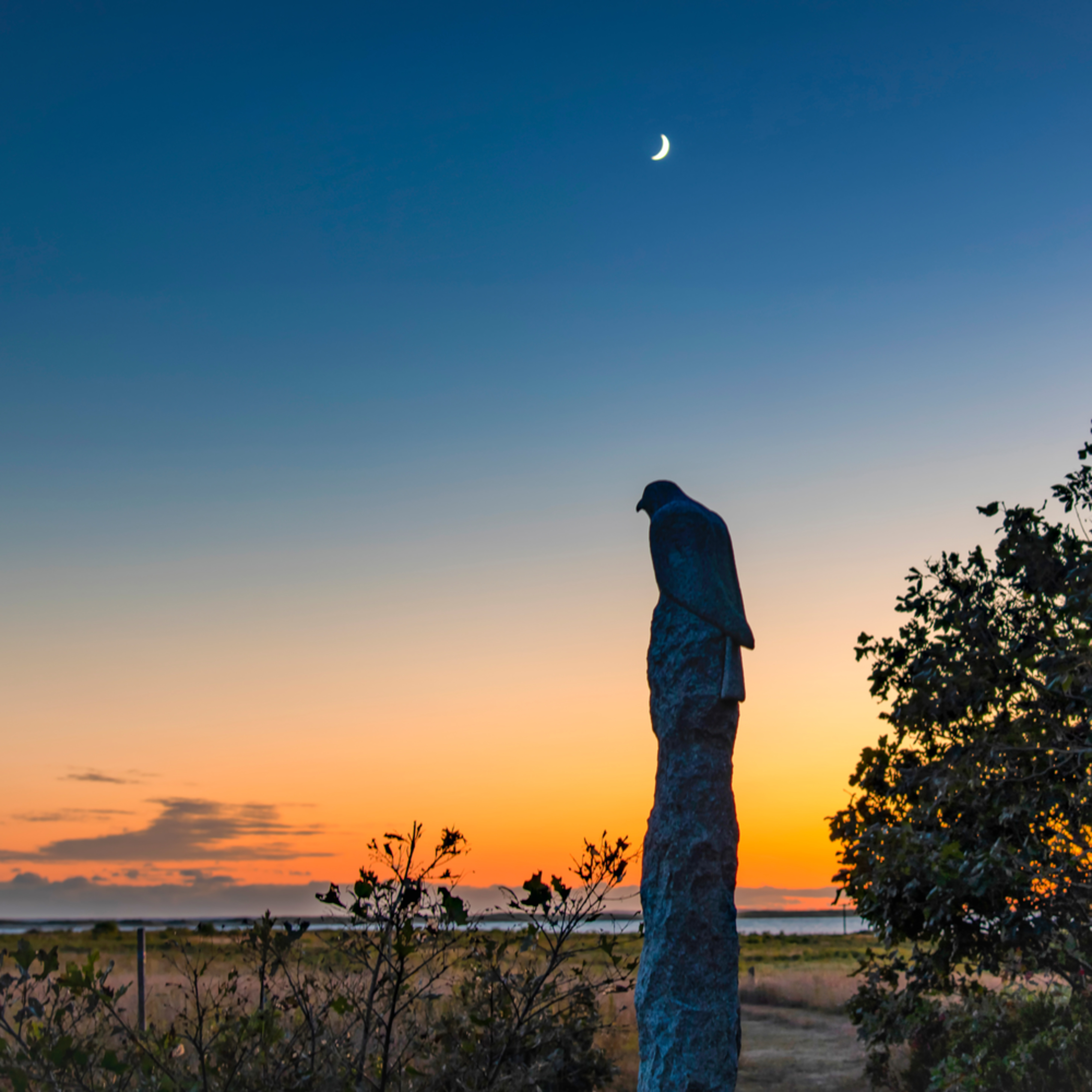 Long point statue sunset nf7svd