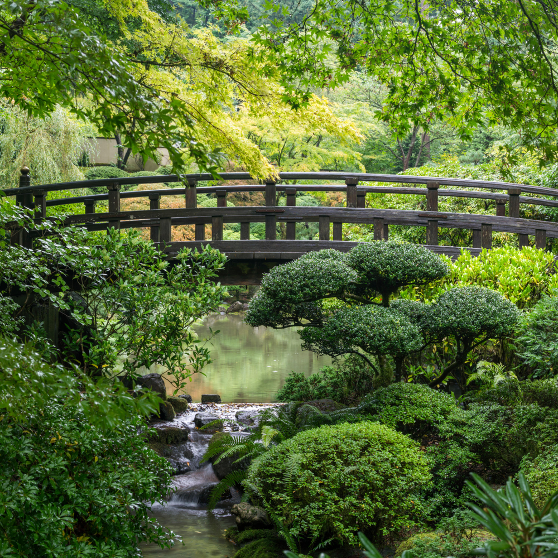 Portland japanese garden guipj6