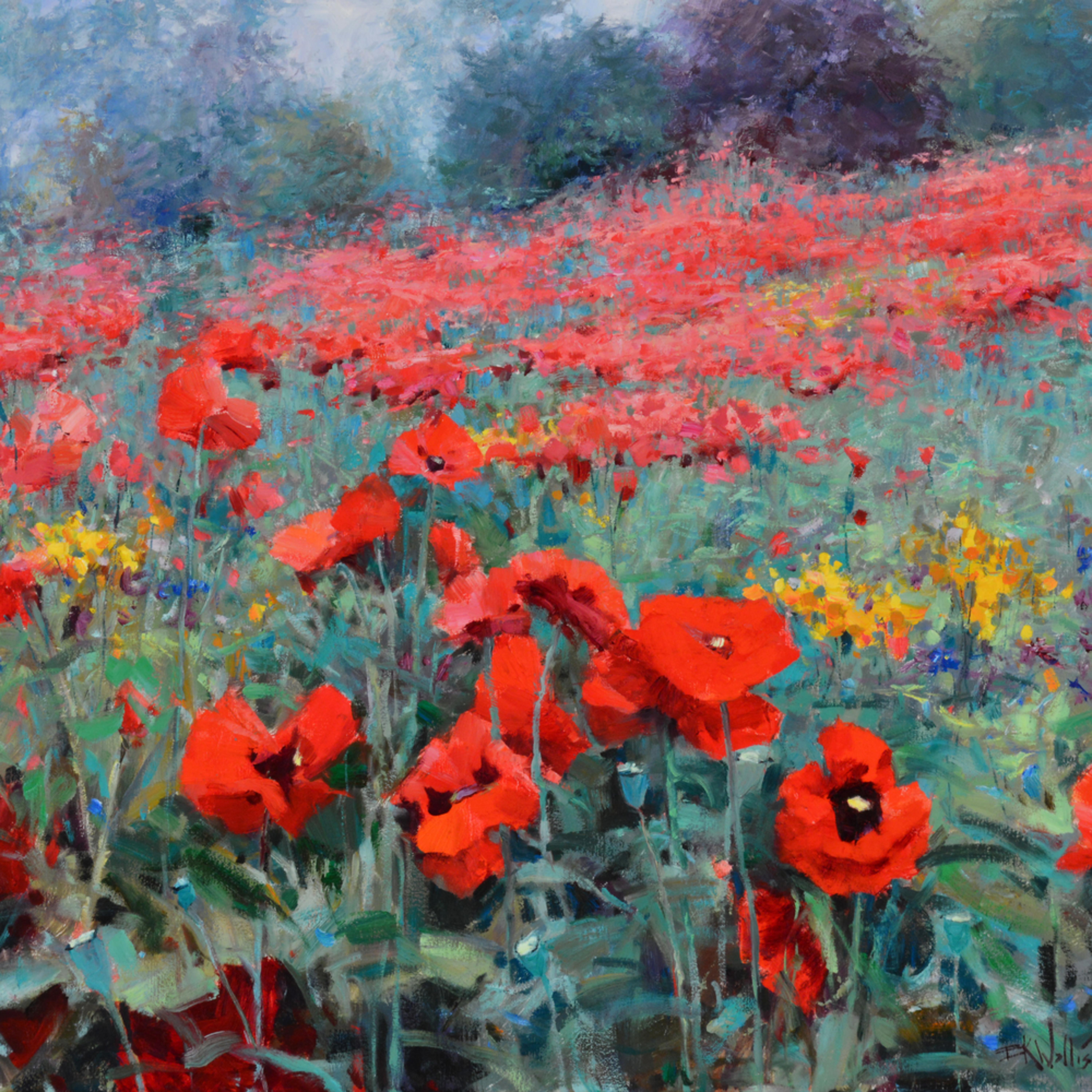 Poppy lovely 24x30 jhsotg