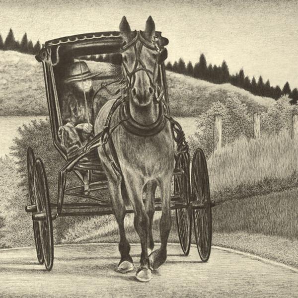 Amish buggy jnuz8f