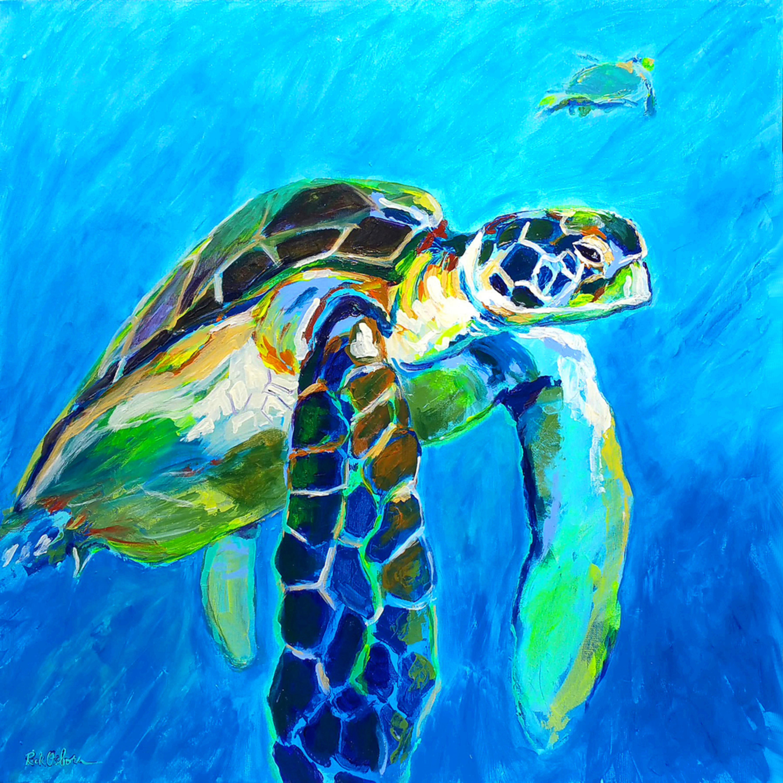 Sea turtle rick osborn asgjd4