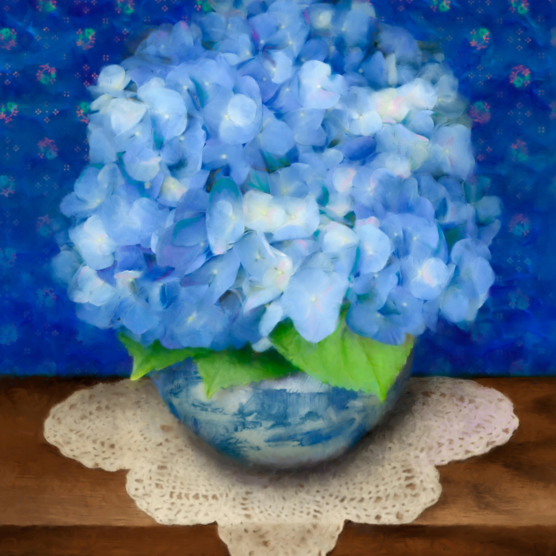 100201 ahern delft blue hydrangea 20x24x300 qlmtzw