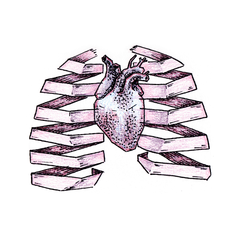 Frozen heart paper lungs sketch book xoryqf