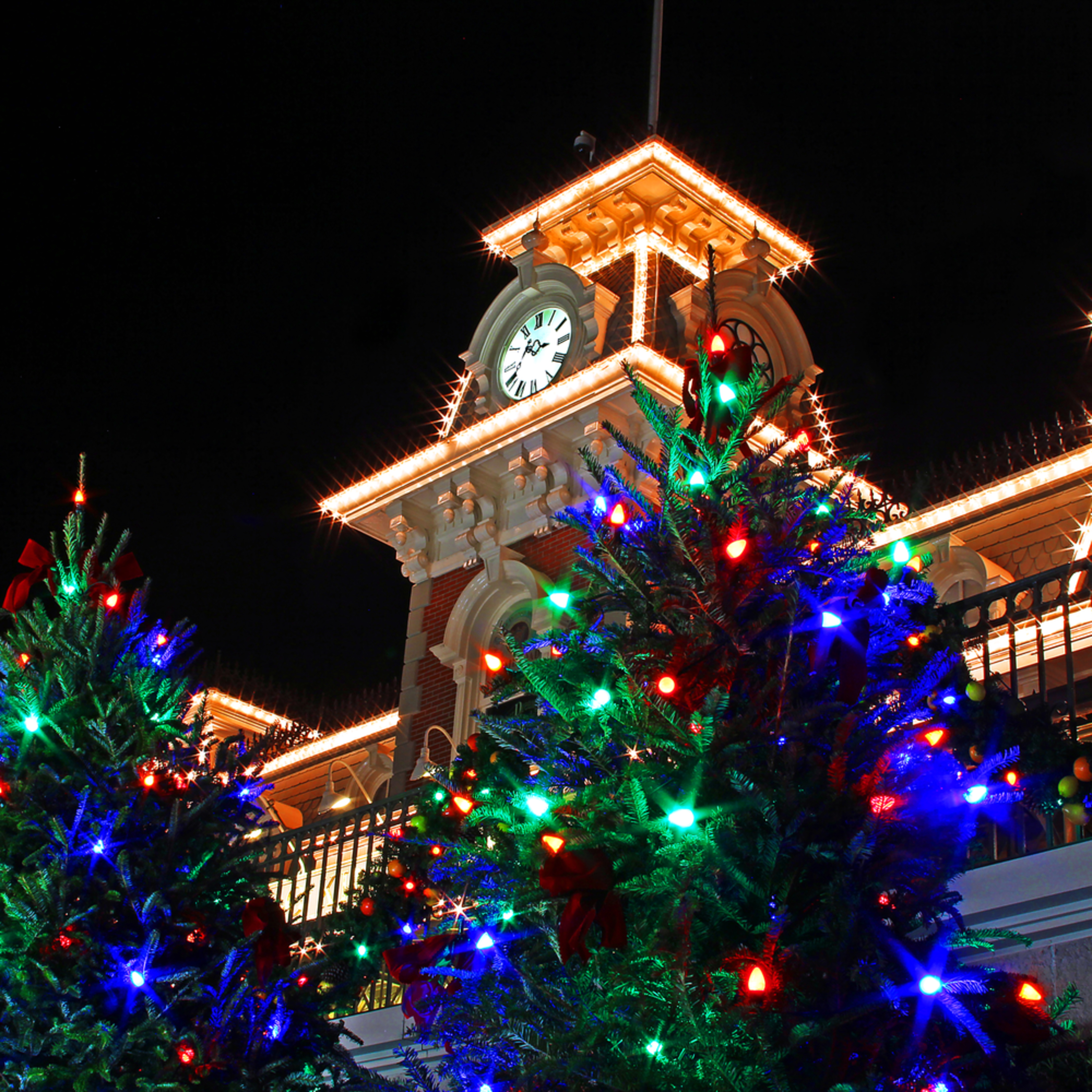 Magic kingdom christmas trees zumspl