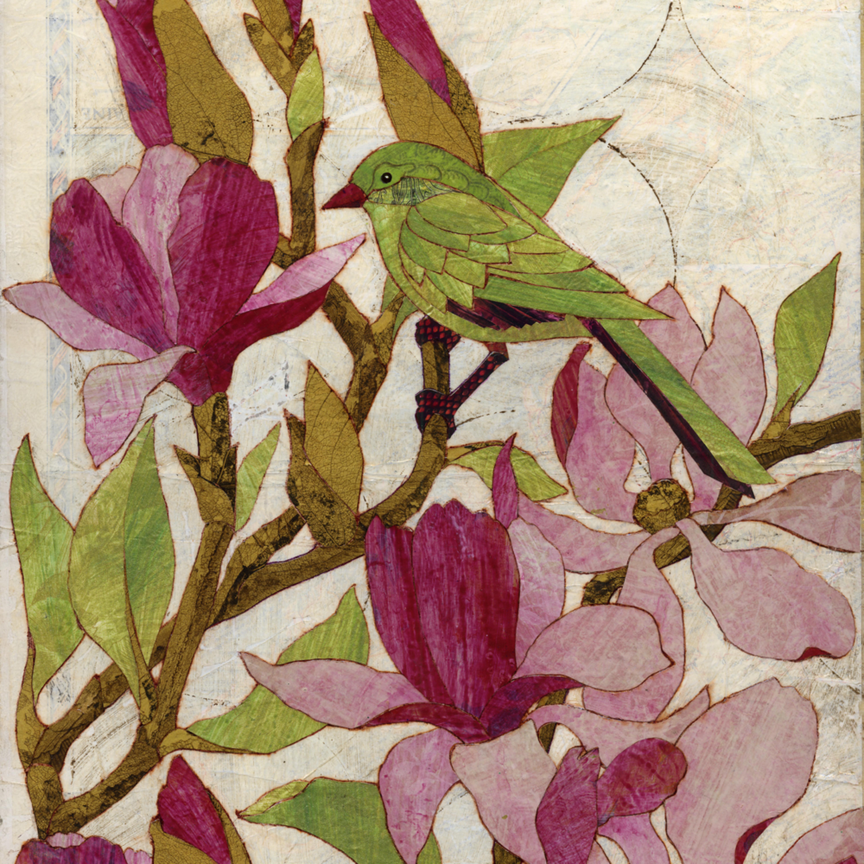 Magnolias dr1lfj