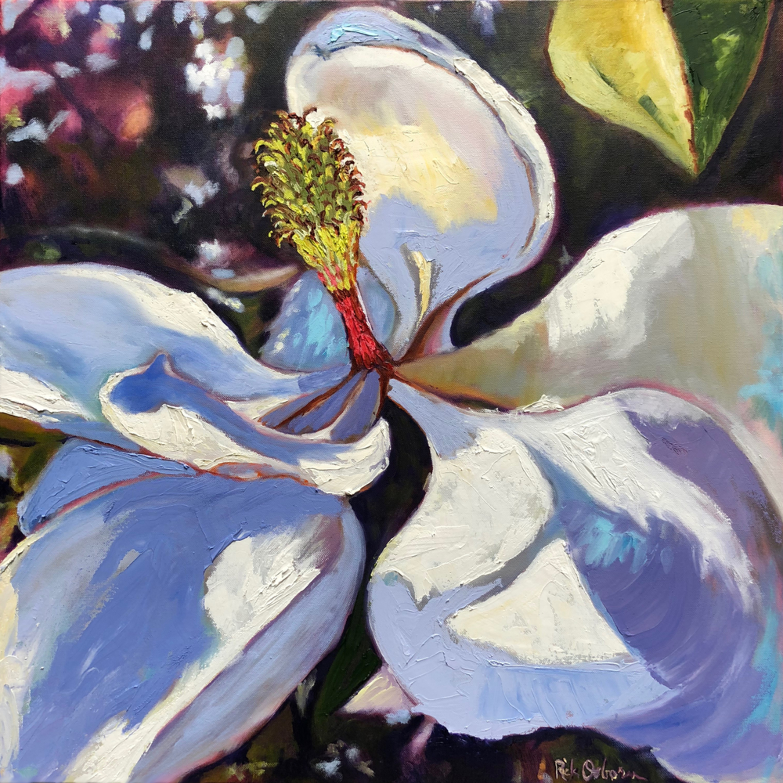 Magnolia blossom ke2vlk