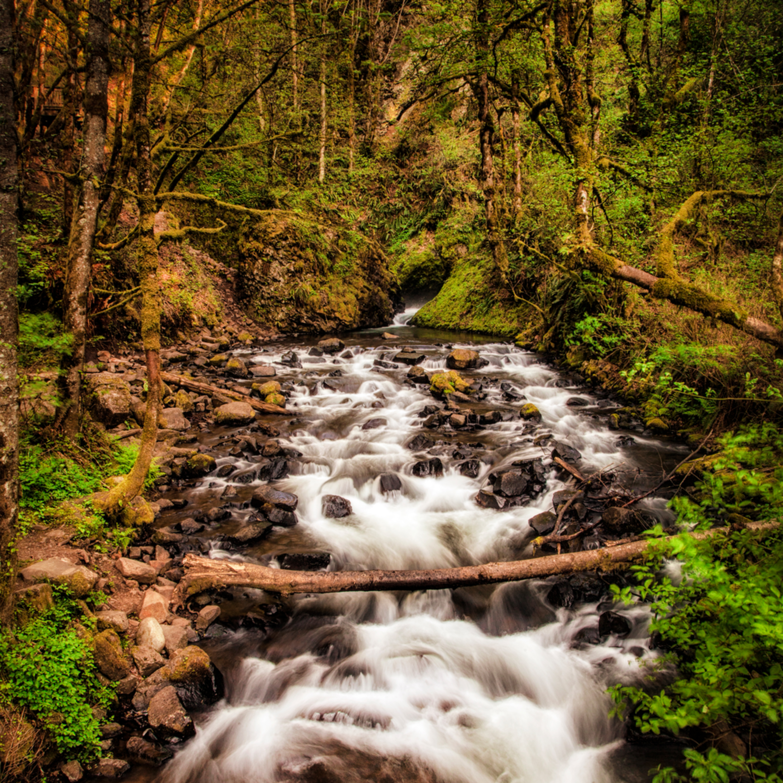 Waterfall 1 near portland or gv0ugm