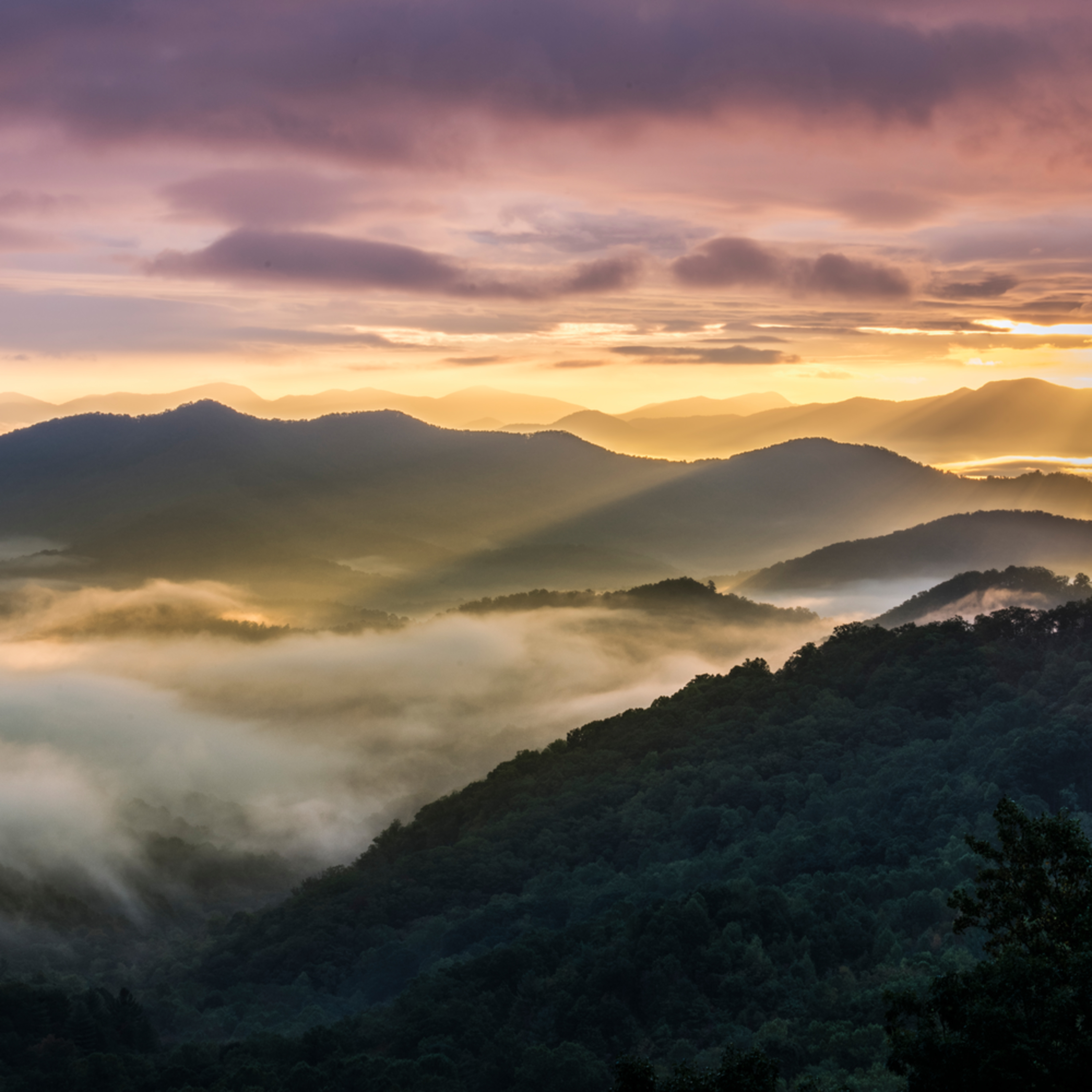 Andy crawford photography smoky mountains 20171011 6 dsb06x