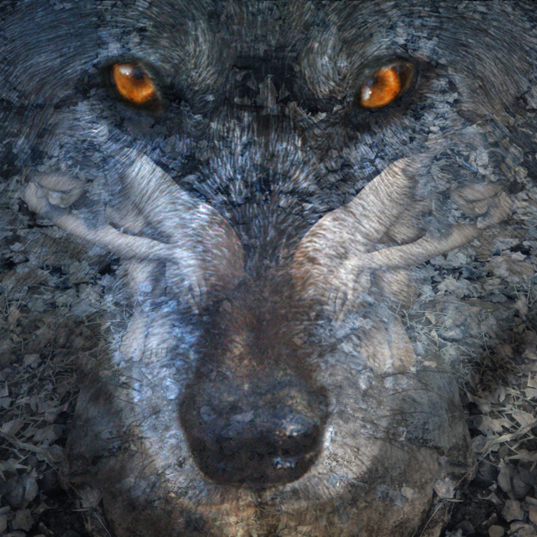 Stephanie with wolf eirw3j