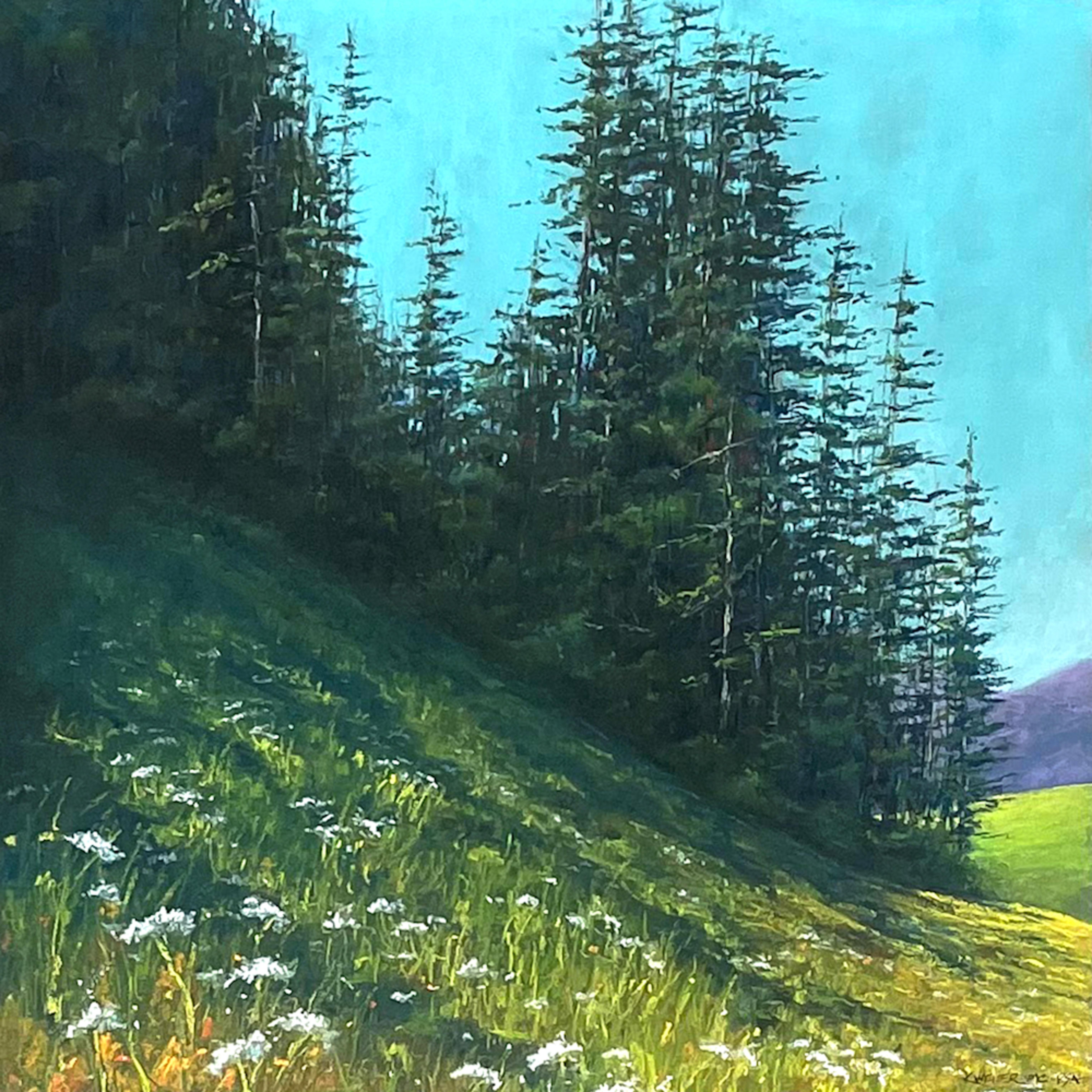 Valley pines sitj87