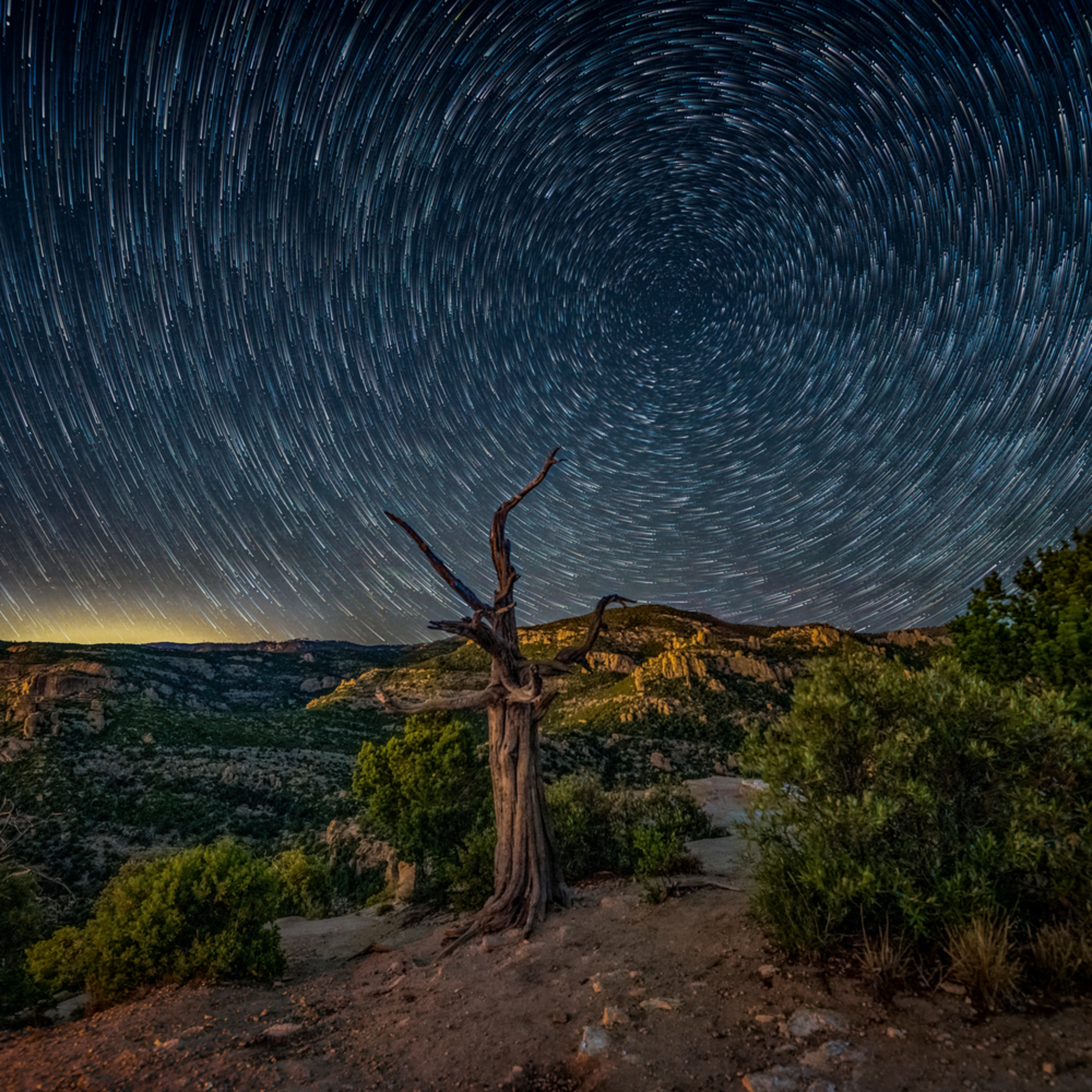 Mount lemmon windy point 2019 05 24 021 star trails with dead tree x6kuxd