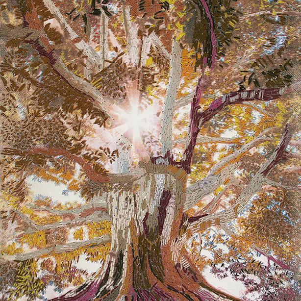 Tree of life web u51pww