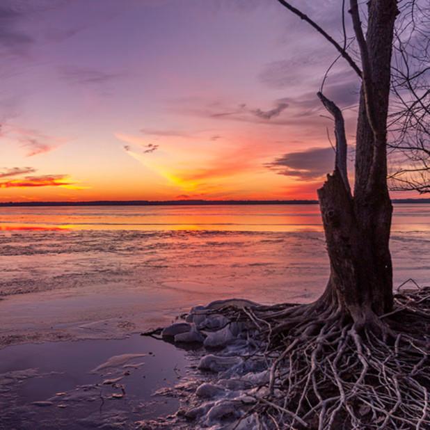Frozen rend lake shoreline no. 2 pdcosm