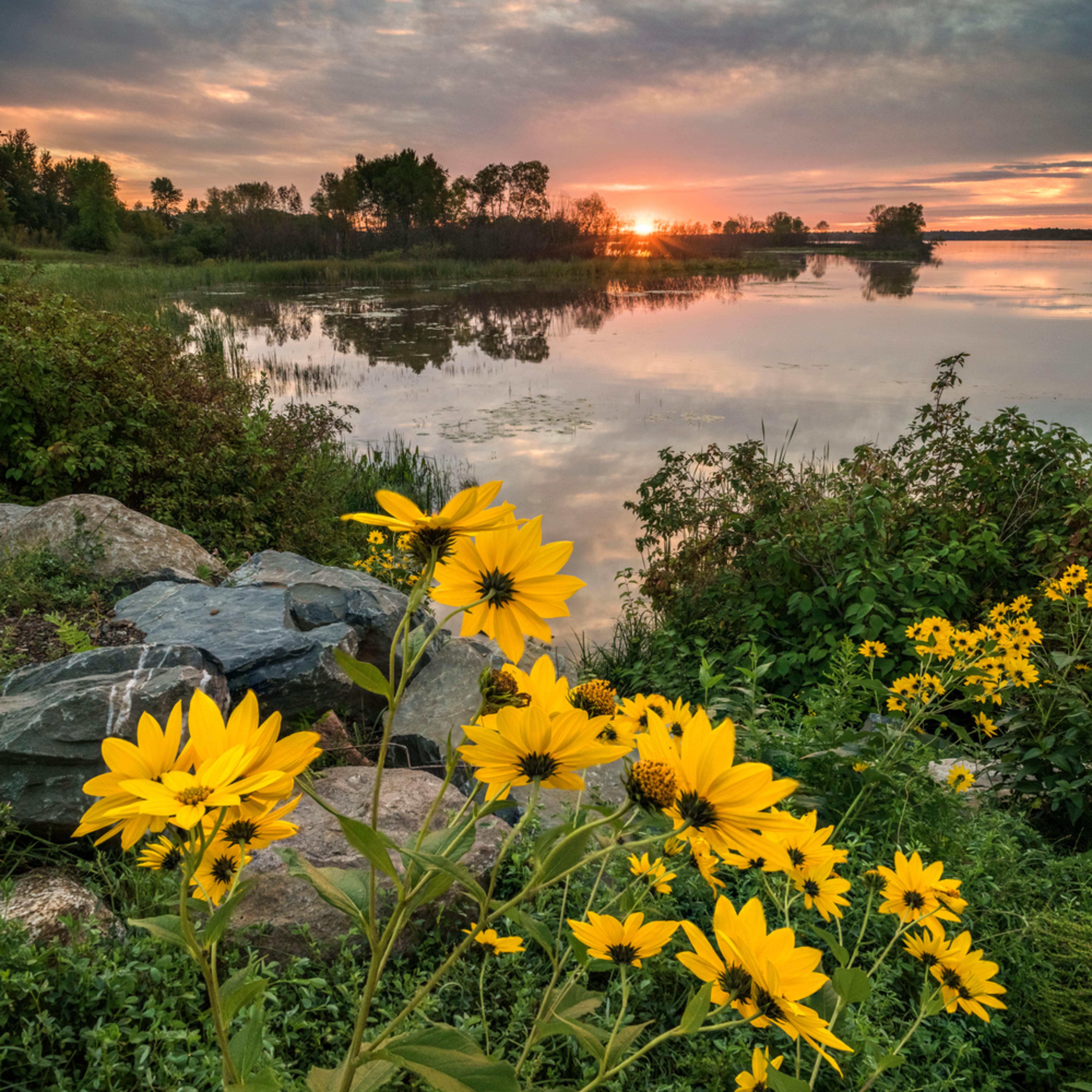 Not yet titled st louis river sunrise xygqrx