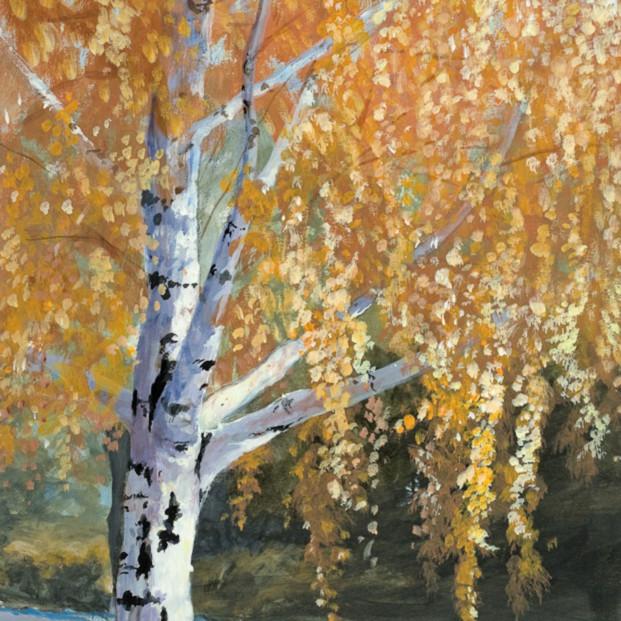Autumn path lores usbrgm