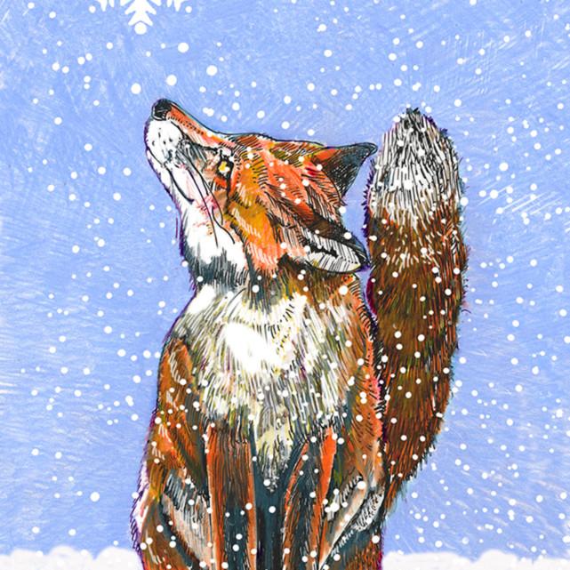 018 fox j9x41d