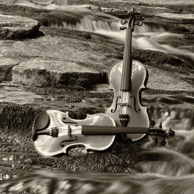 Harmony at clifford falls ii cthwy3