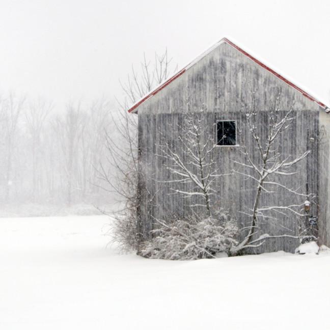Winter in montgomery county   michael sandy dtnzbj