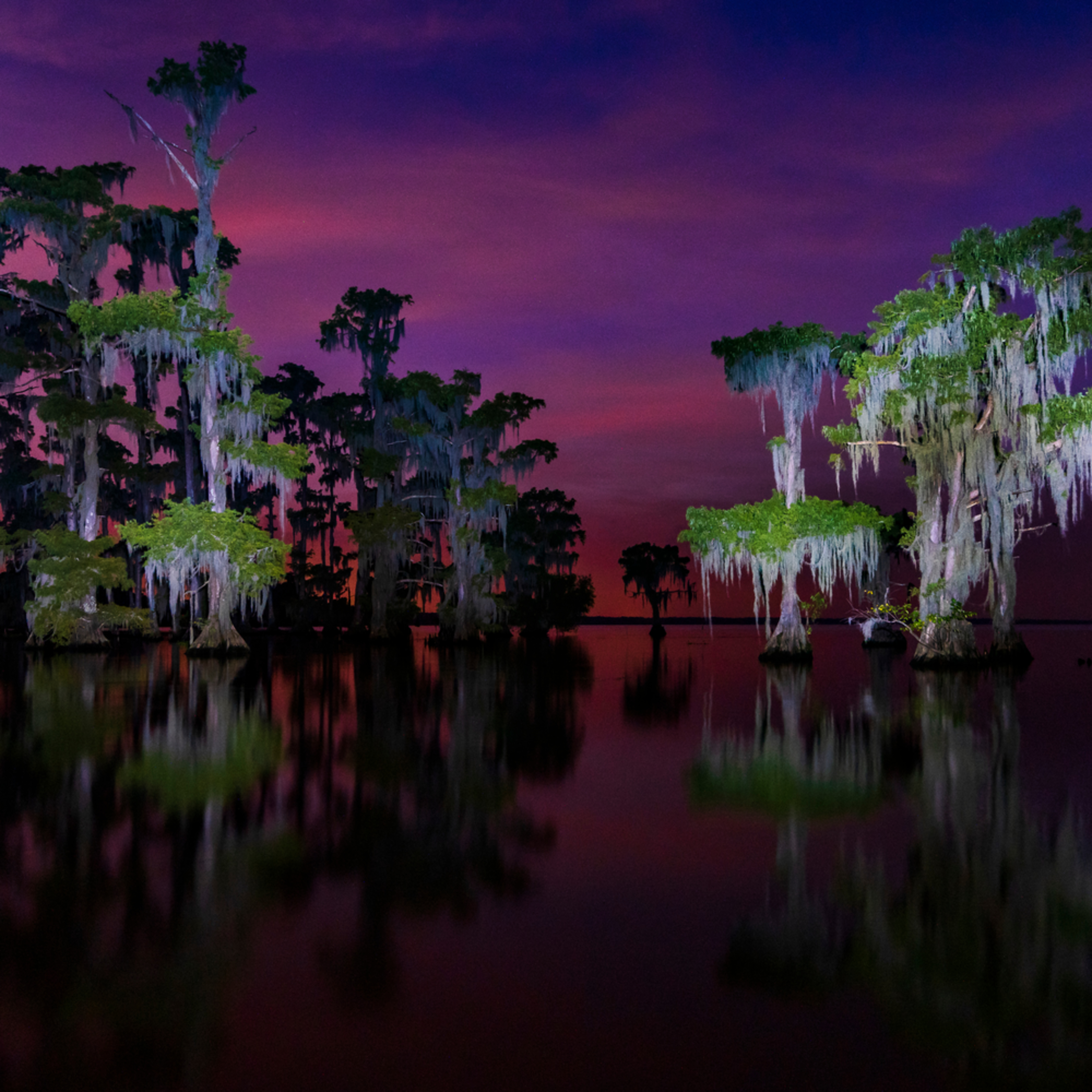 Andy crawford photography lake maurepas 005 vdzzff