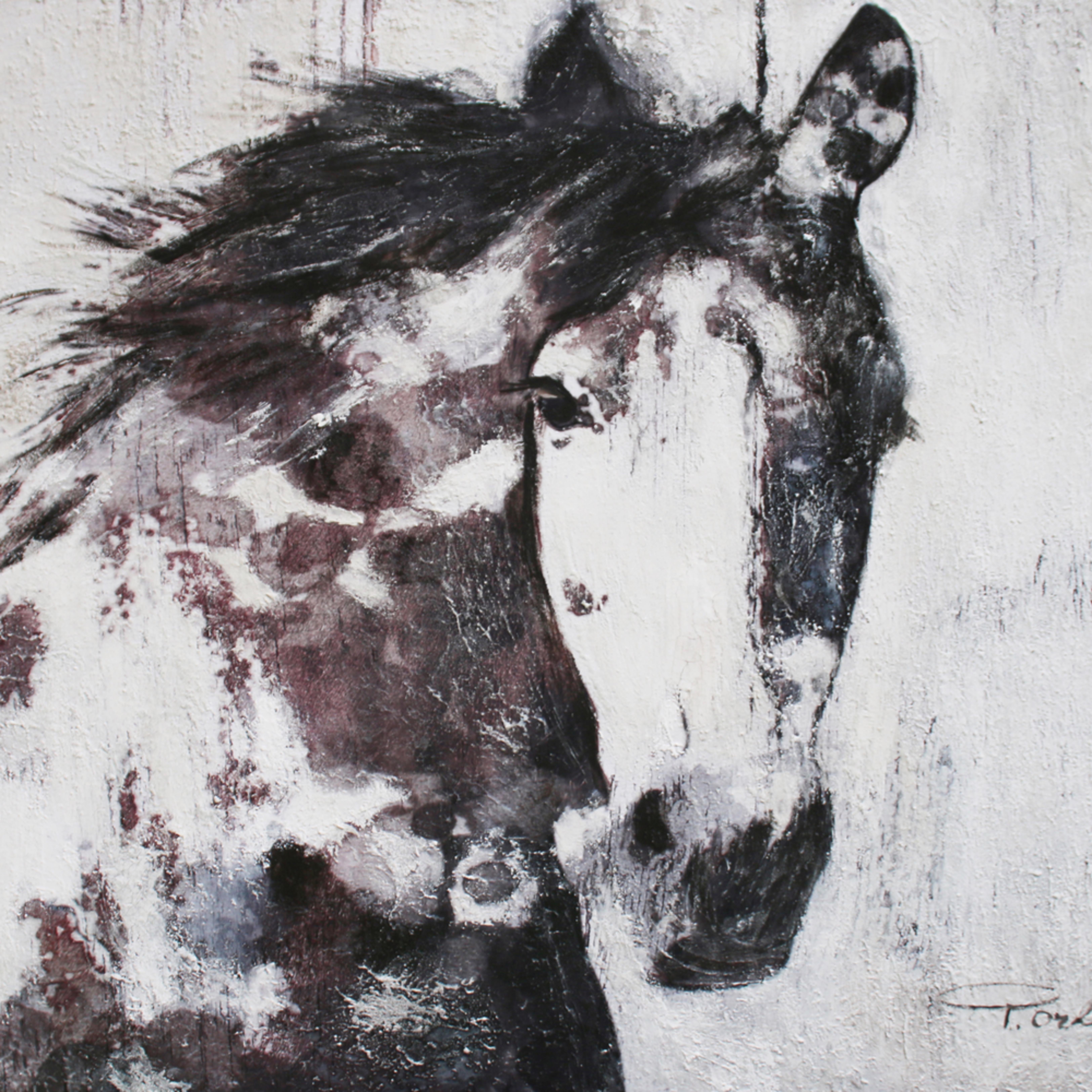 Orl 6144 15 gorgeous horse yov2rz