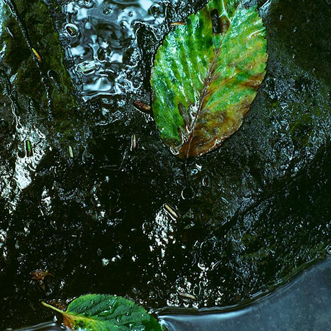 Quiet water nw9rrp