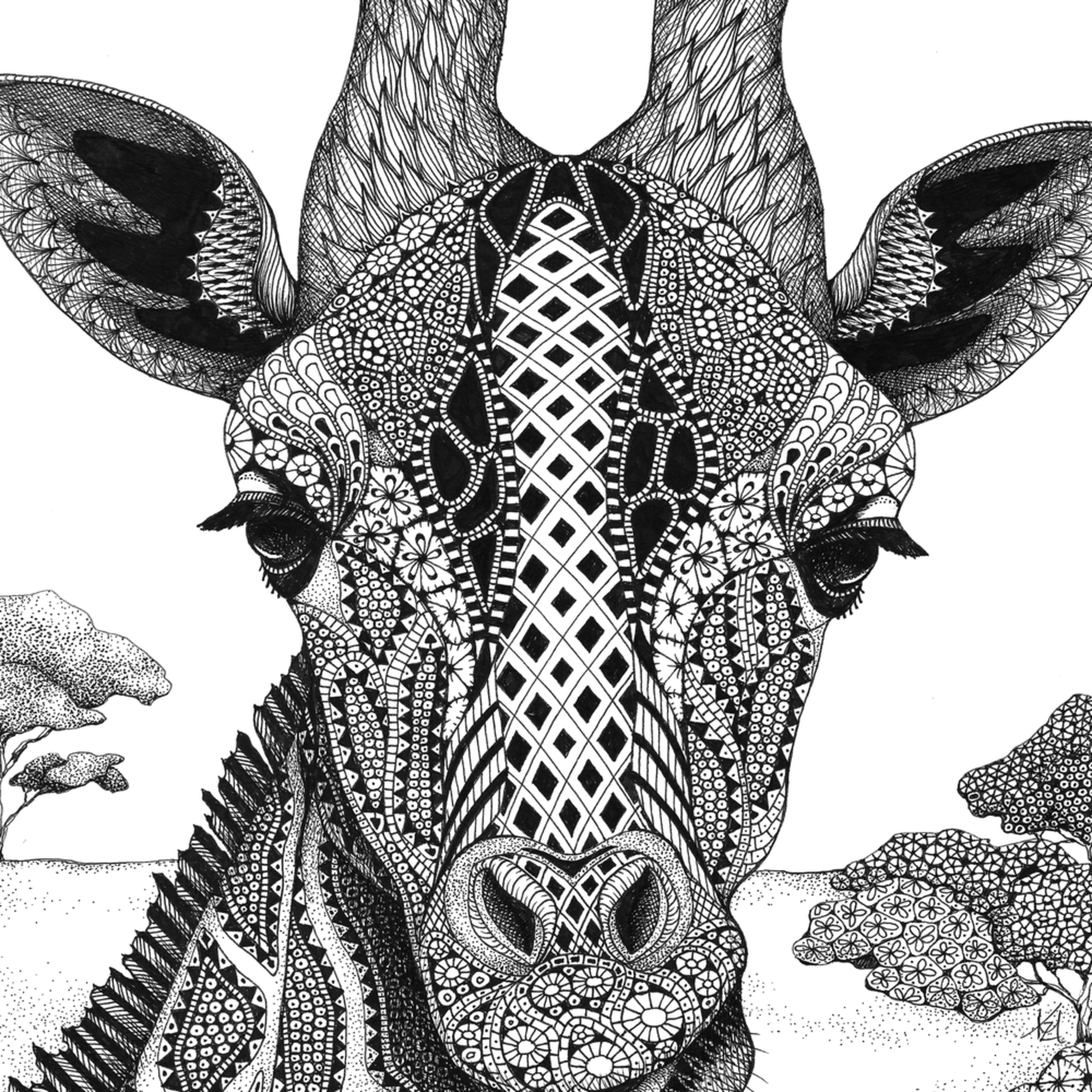 Giraff  serengeti plains giraffe portrait wfrhsl