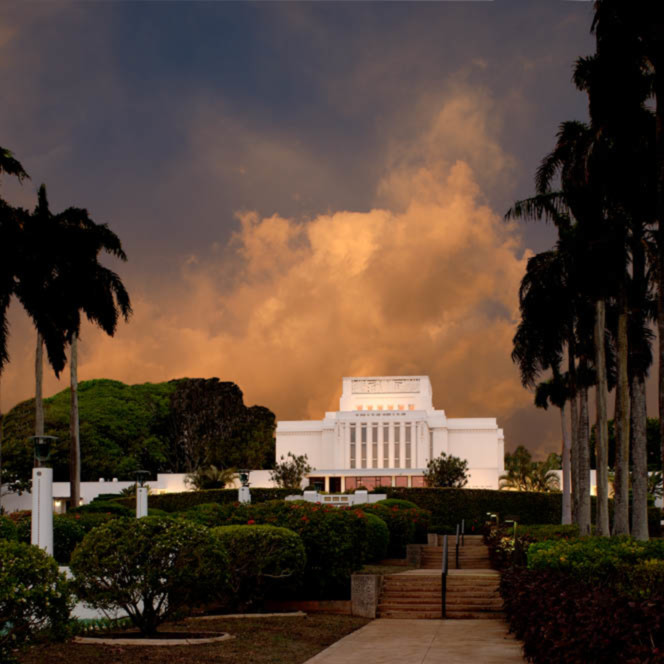 Hank delespinasse laie temple   palm trees hdwyvf