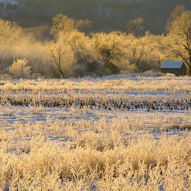 Morning frost 2 ywsy3w