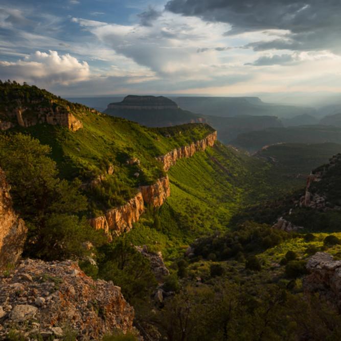 Lush grand canyon dr5pzn