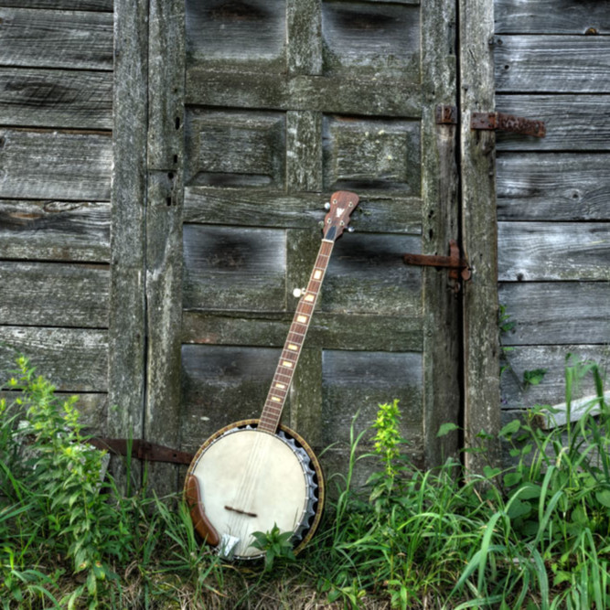 Banjo barn door color gurgcm