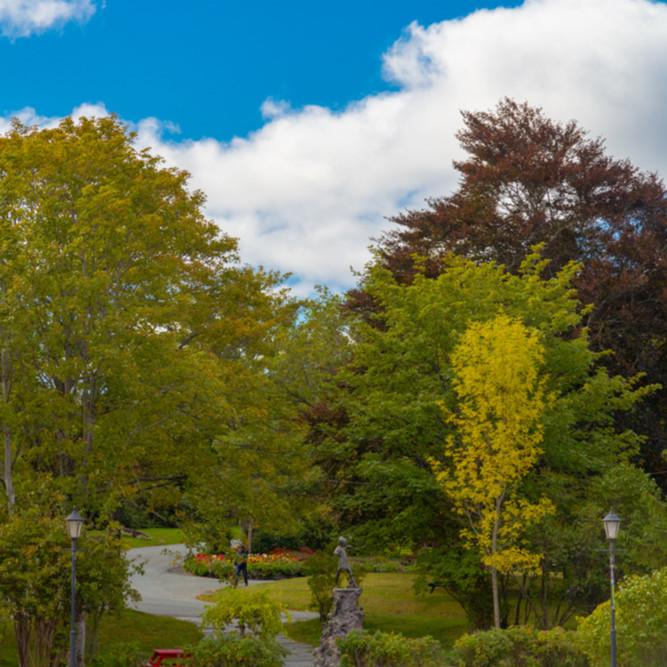 Stroll bowring park vh74vr